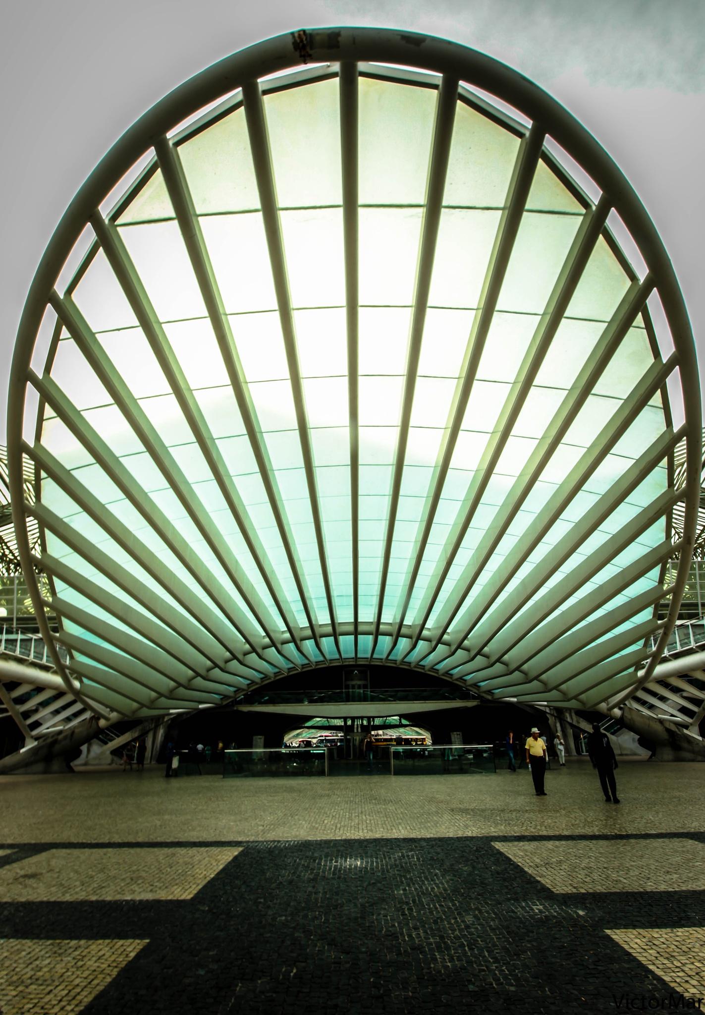 Railway station -Lisbon by victormar