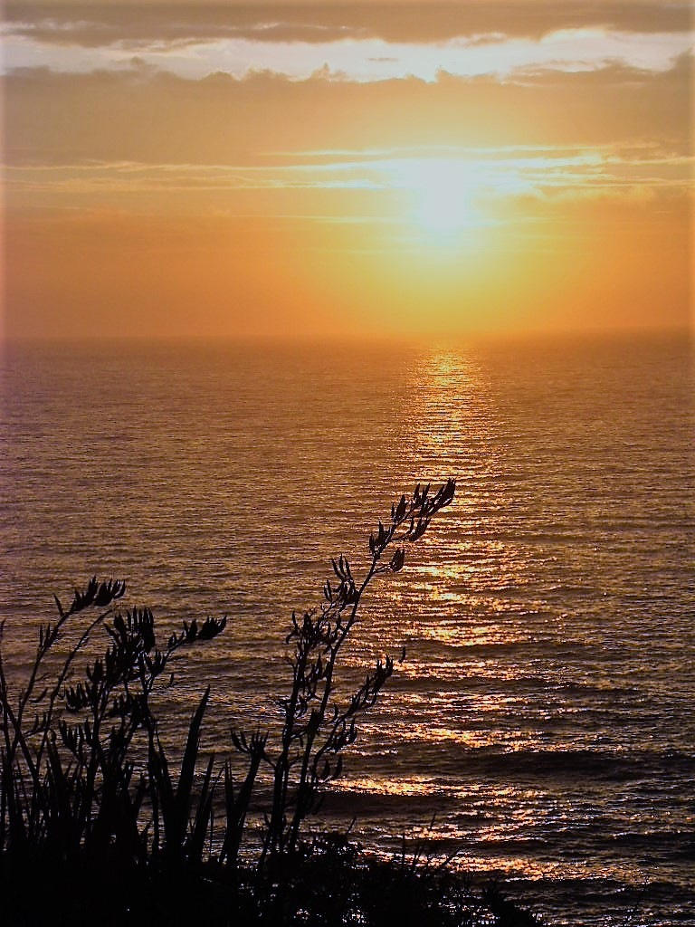 Sunrise over waves by Sandra Wright