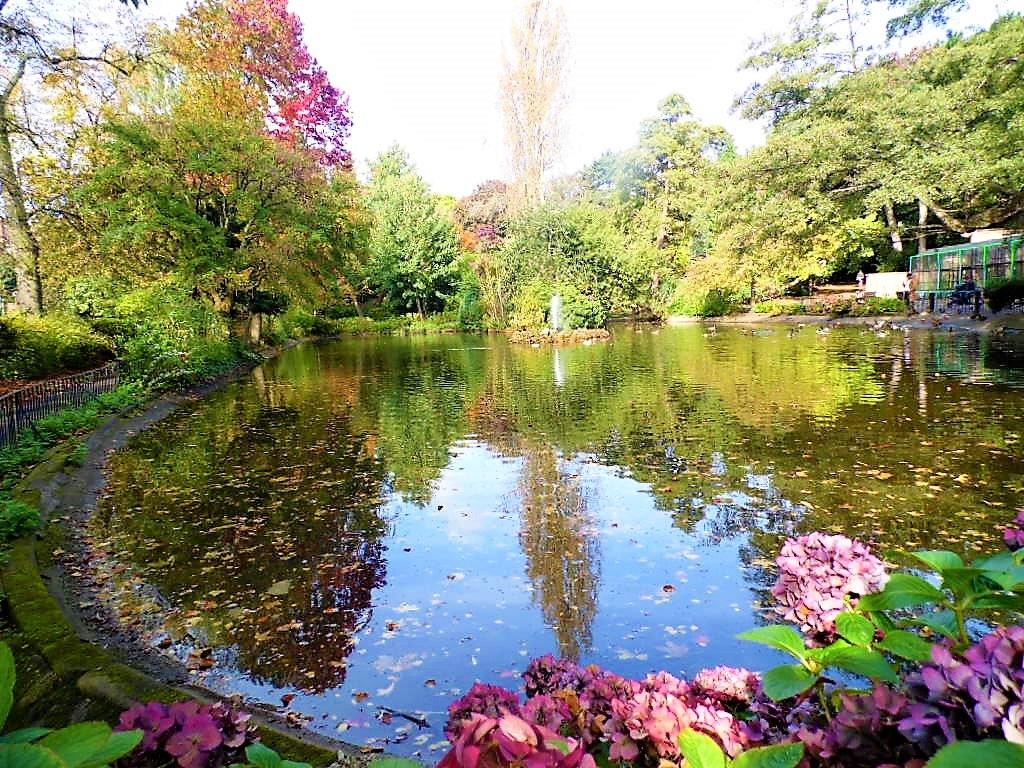 Autumn stroll by Sandra Wright