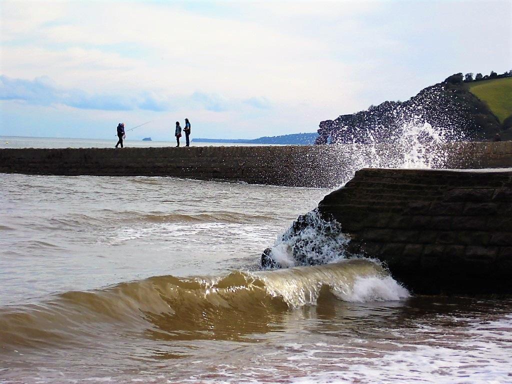 Splash by Sandra Wright