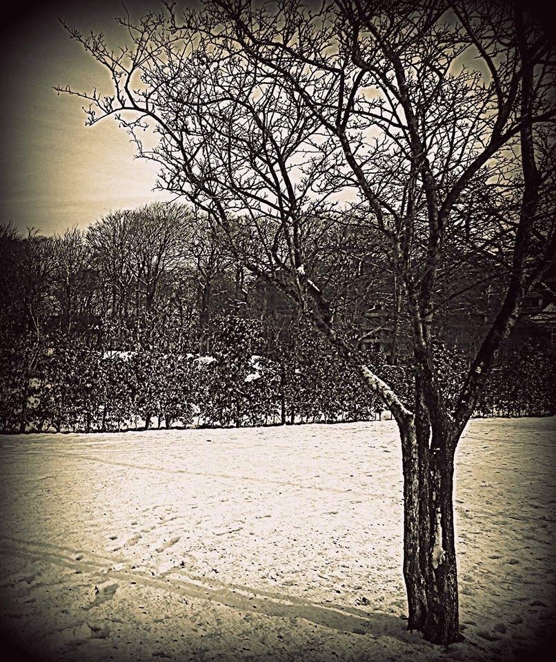 Spadseretur i sneen (2016). by Pauline Bartholdy Lennholm