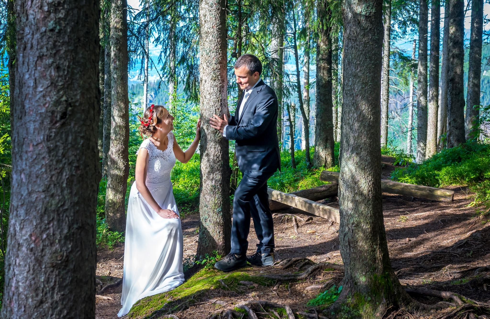W lesie | In the forest by Adam Kolaśniewski