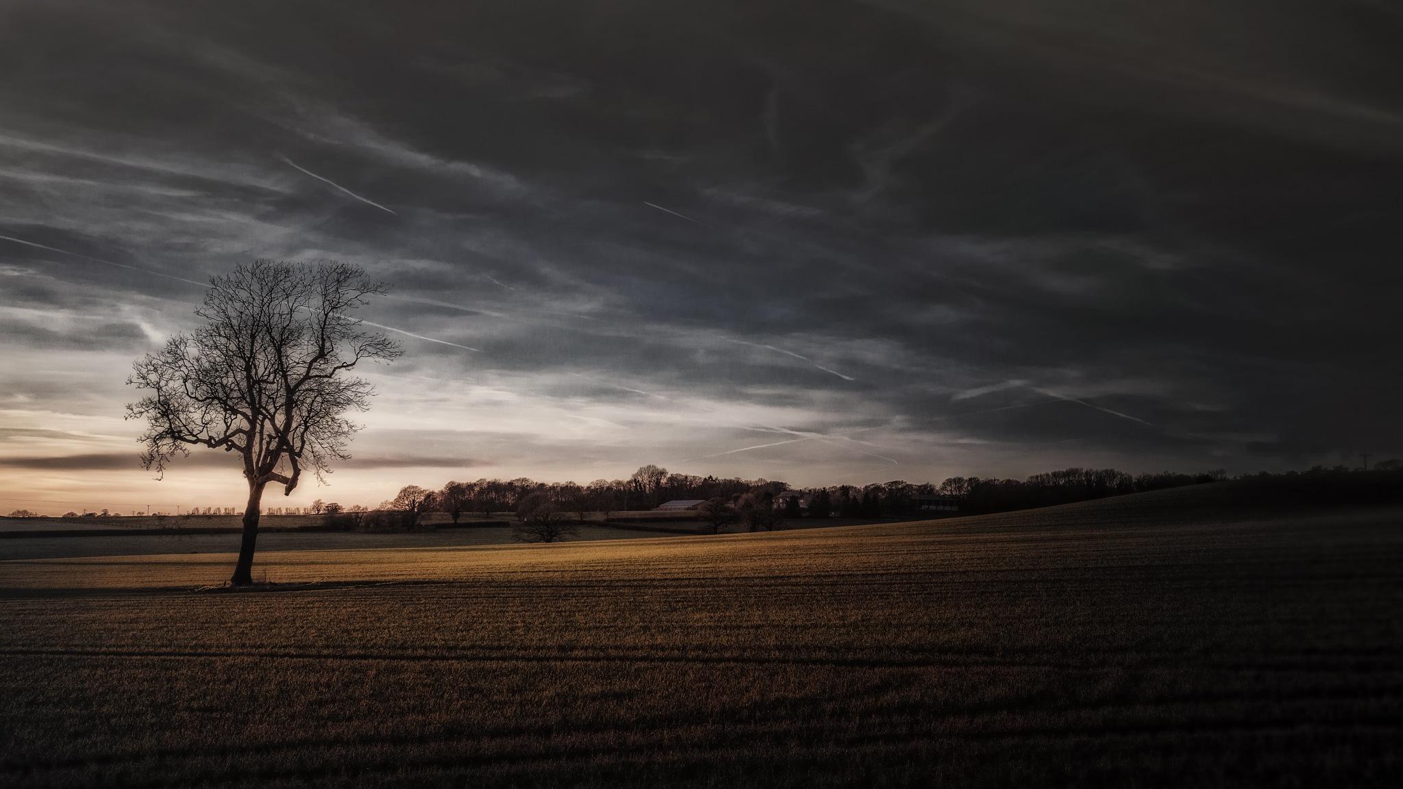 Peace at dusk.. by davidwalpole