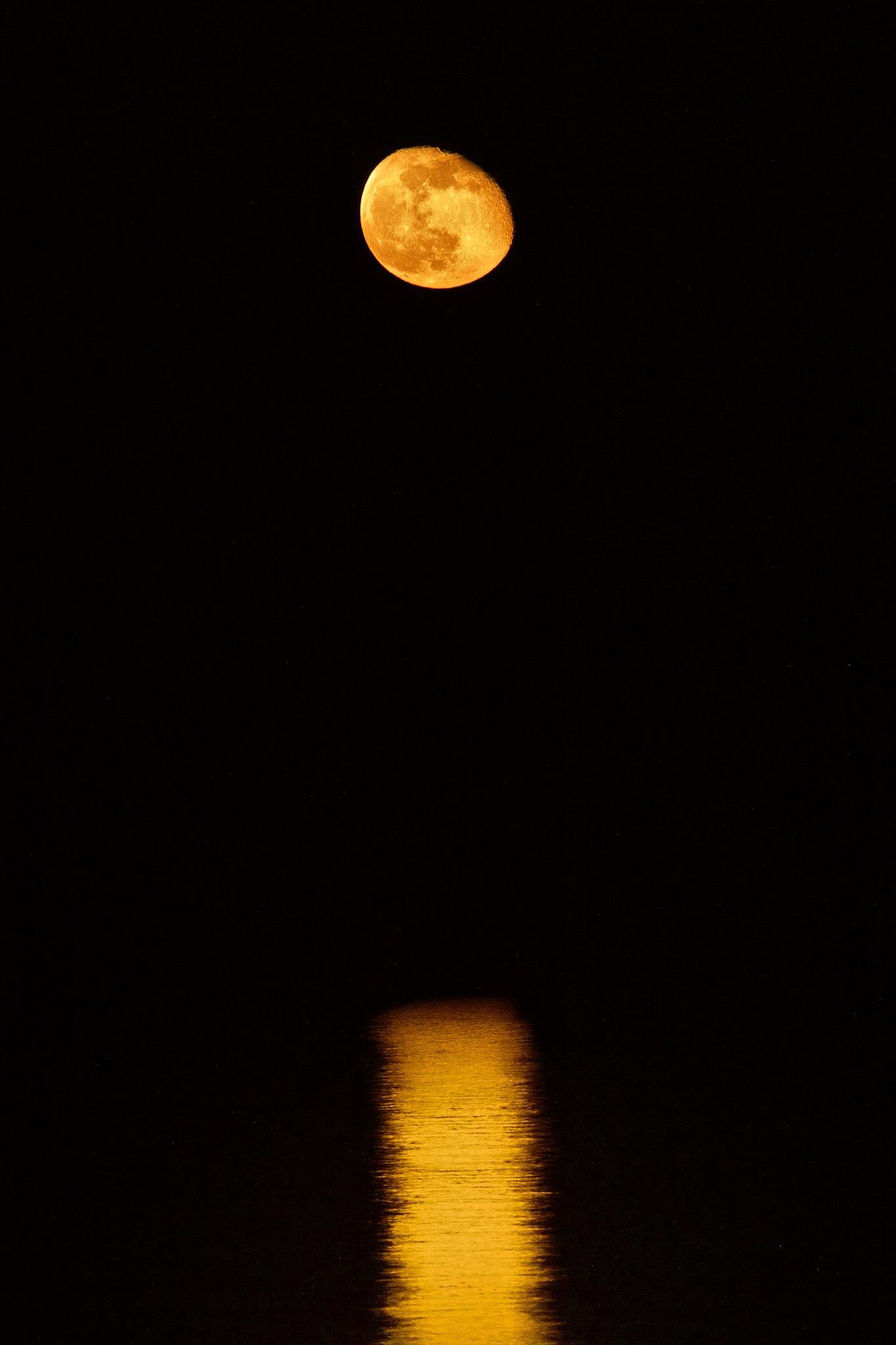 Moonrise 15-03-17 by MarkBrooks