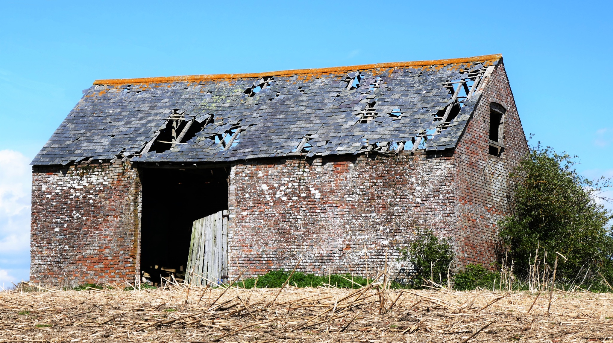 Derelict Barn Front View by William J Rees