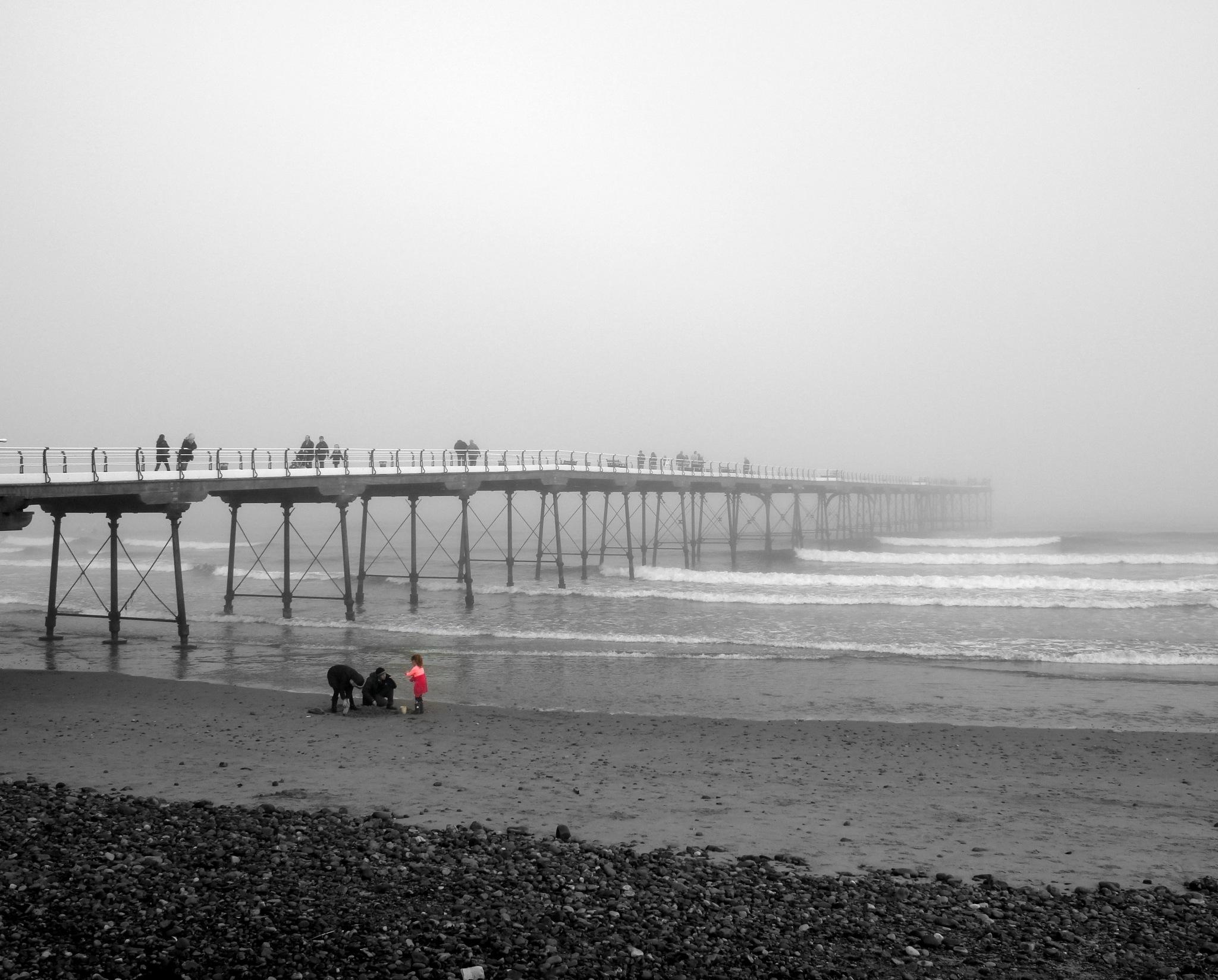the Girl on the beach by bunts45
