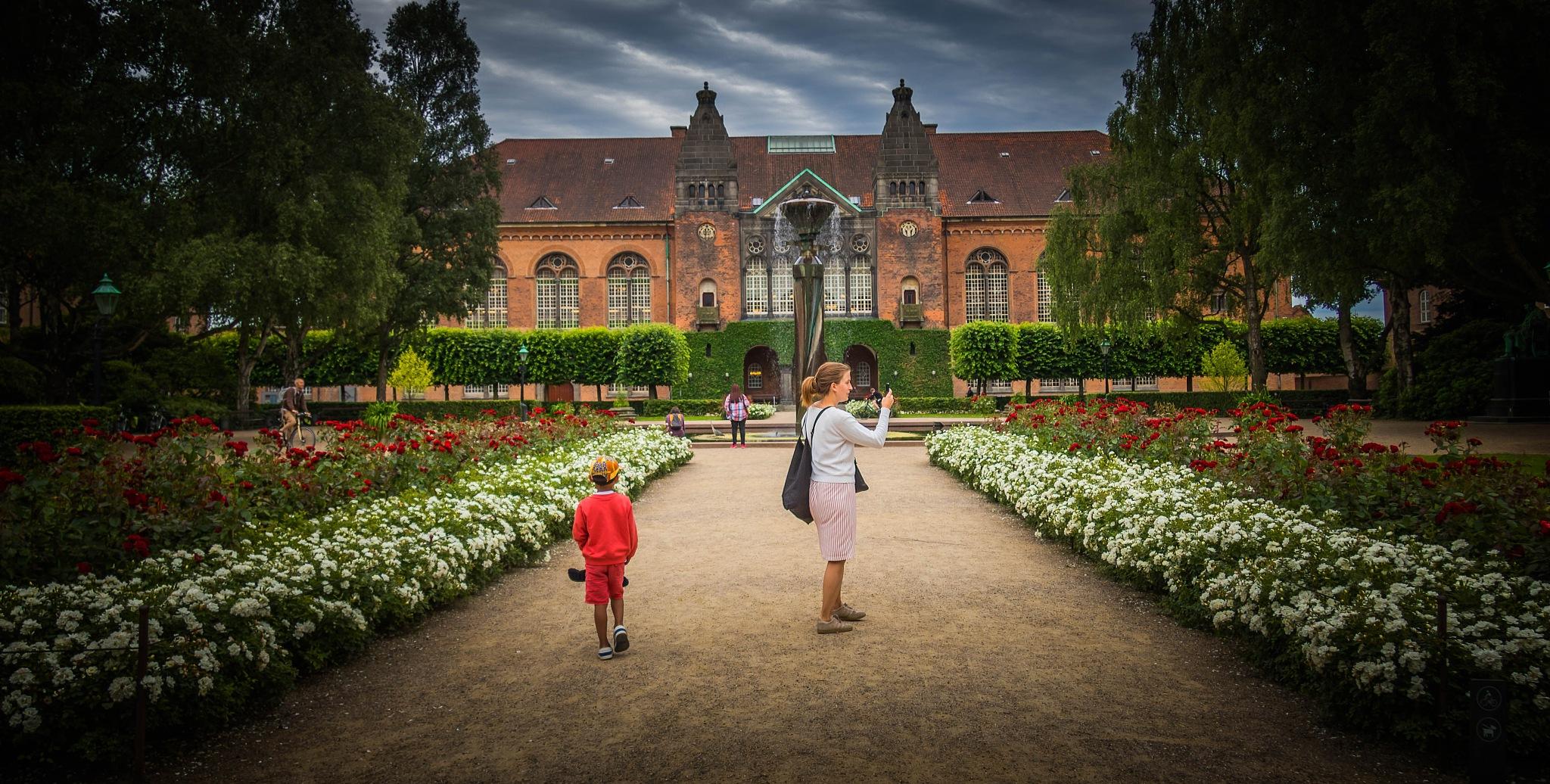In the royal garden by Sheku Conteh