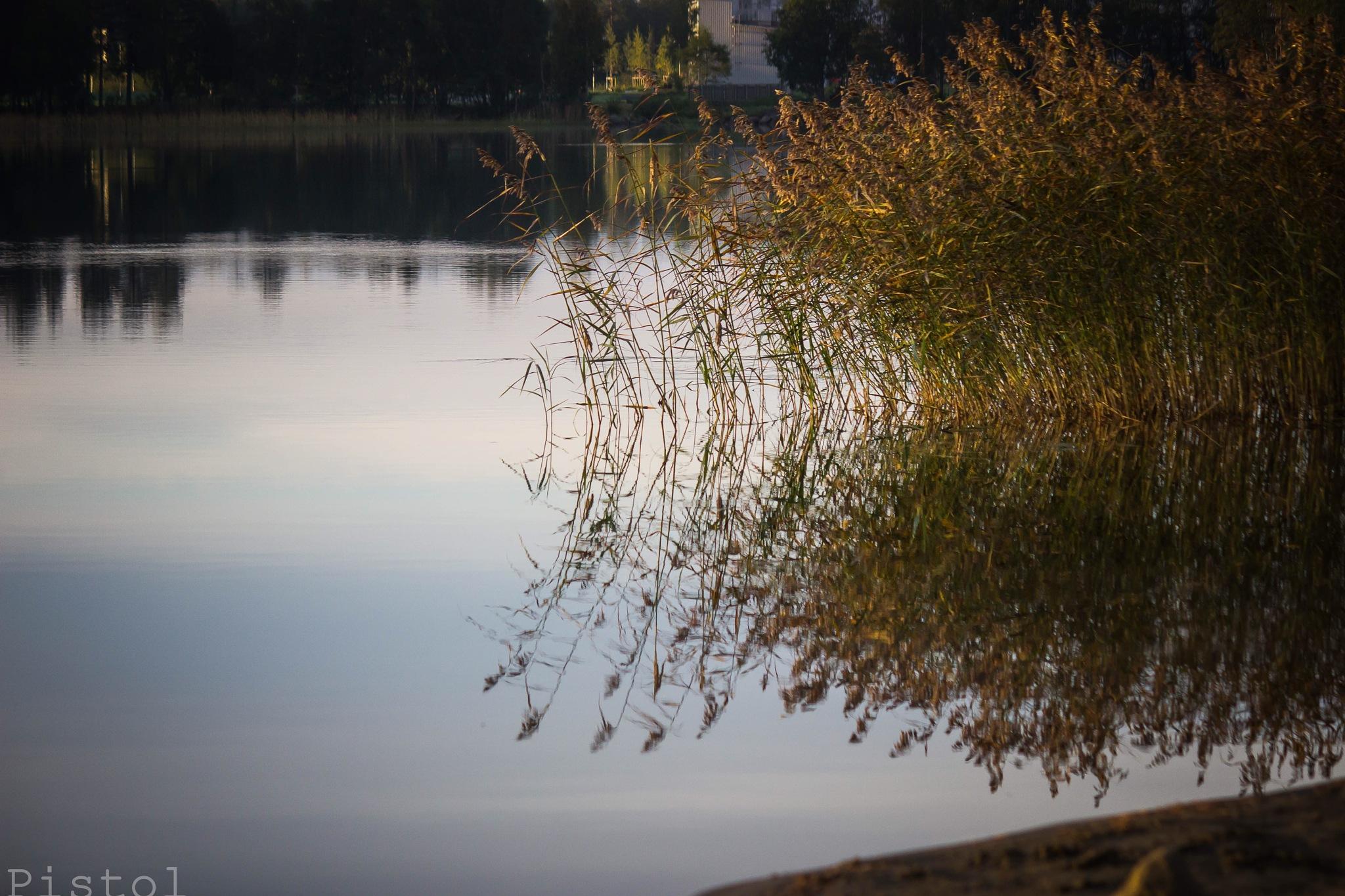 Styling Reflection by Sheku Conteh