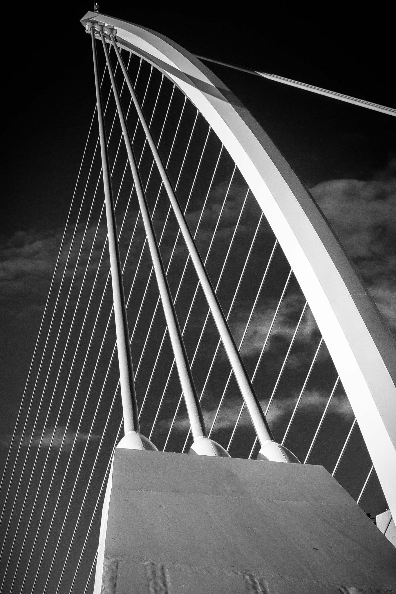 Samuel Beckett Bridge.  Dublin. by billymcwilliams