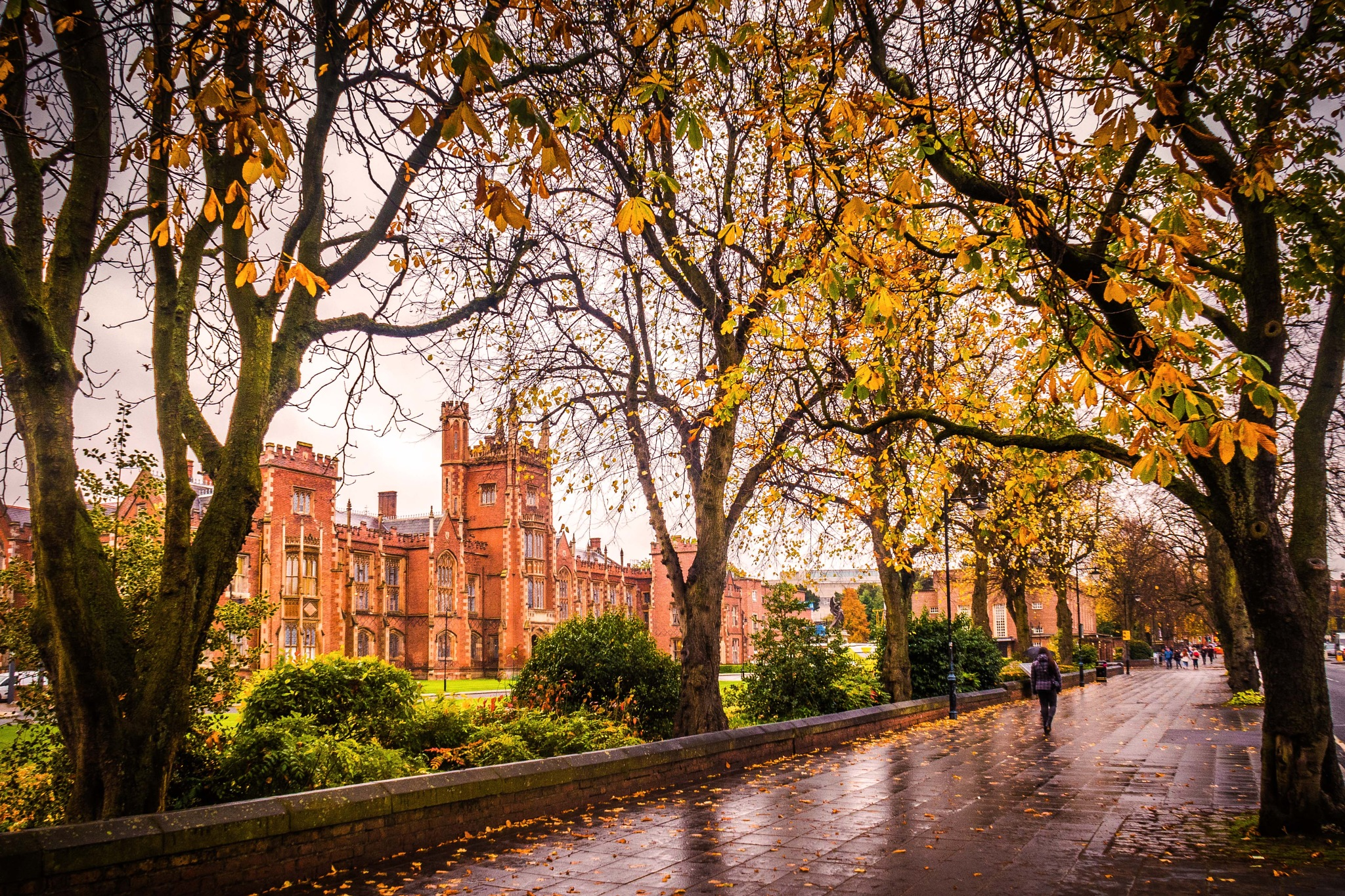 Fall at Queen's  Belfast. by billymcwilliams