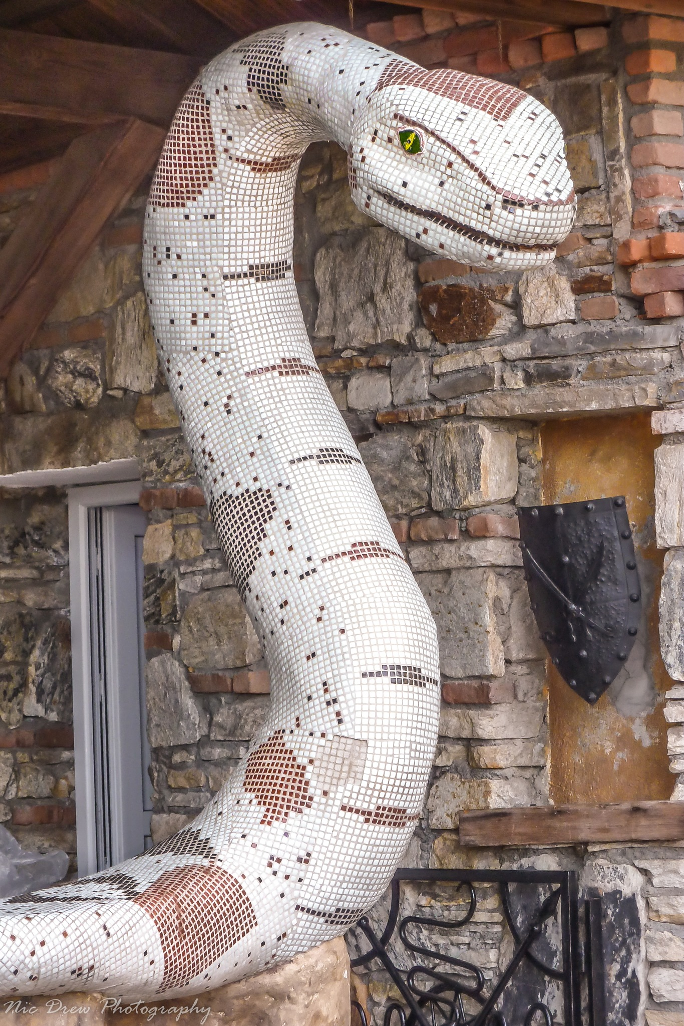 Snake by Nic Drew
