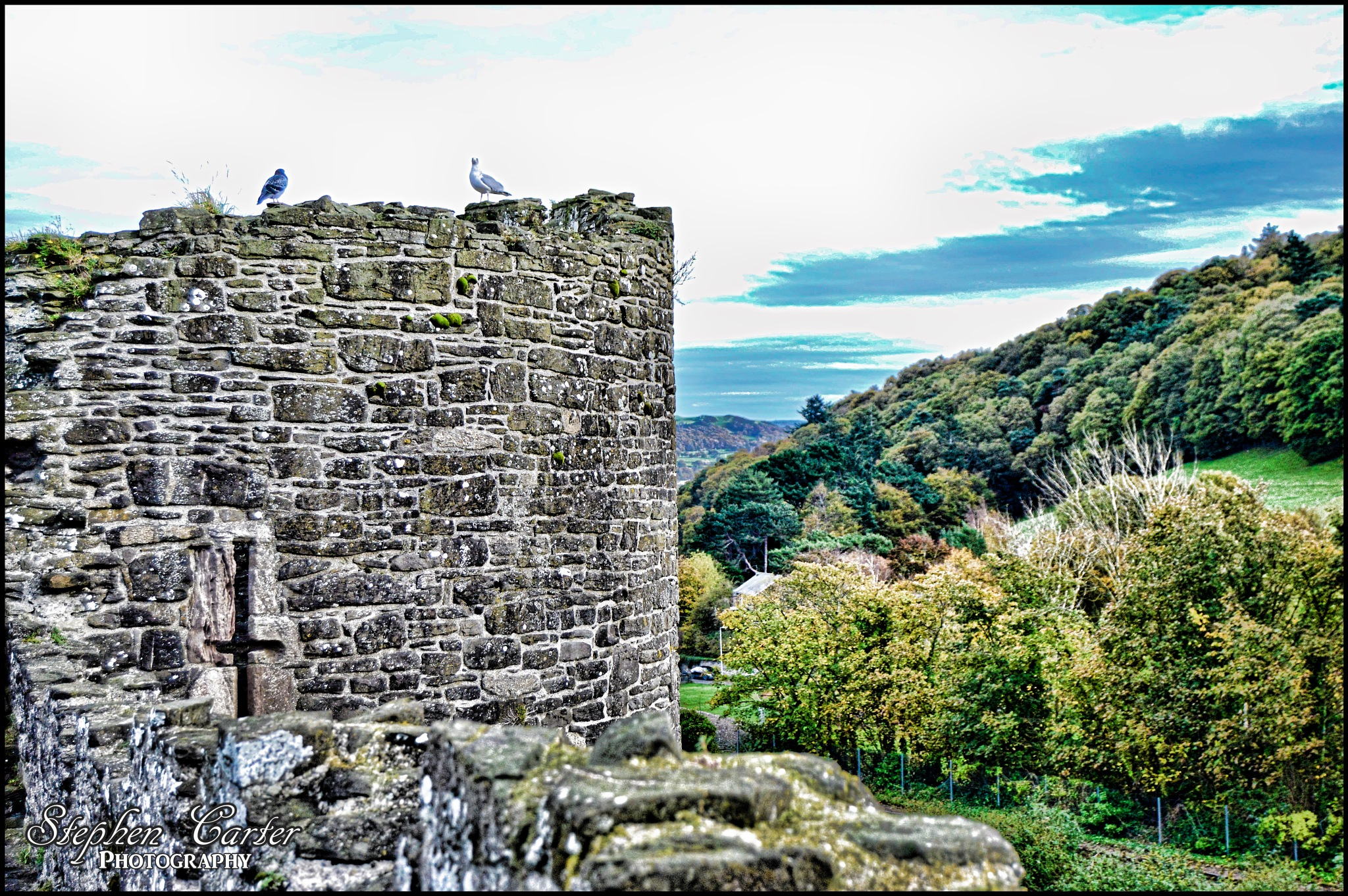 Conwy by Stephen Carter Photography