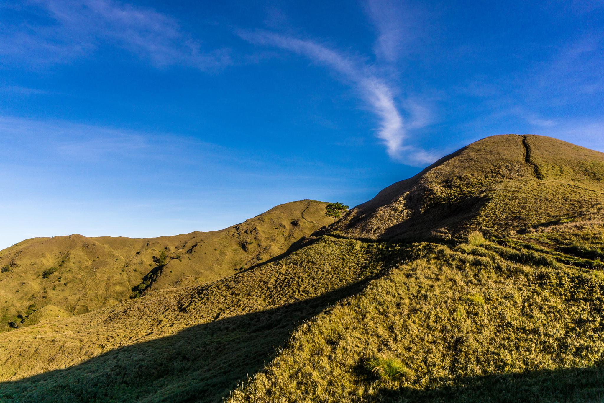 Mt.Pulag by francis