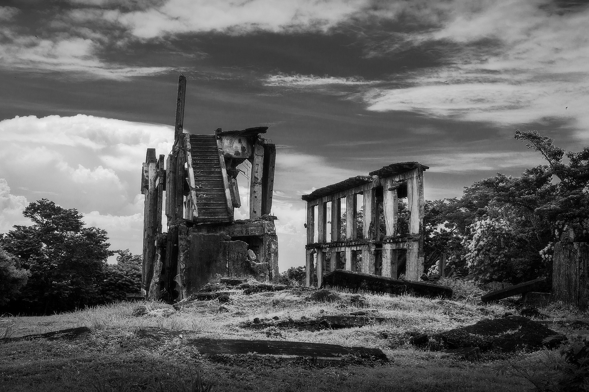 the ruins by francis