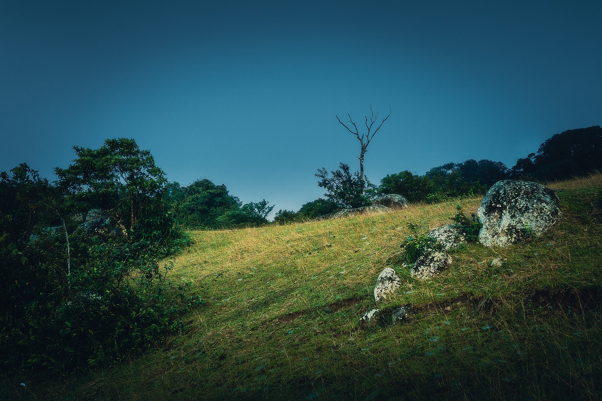 Mt,Daguldol(Philippines) by francis