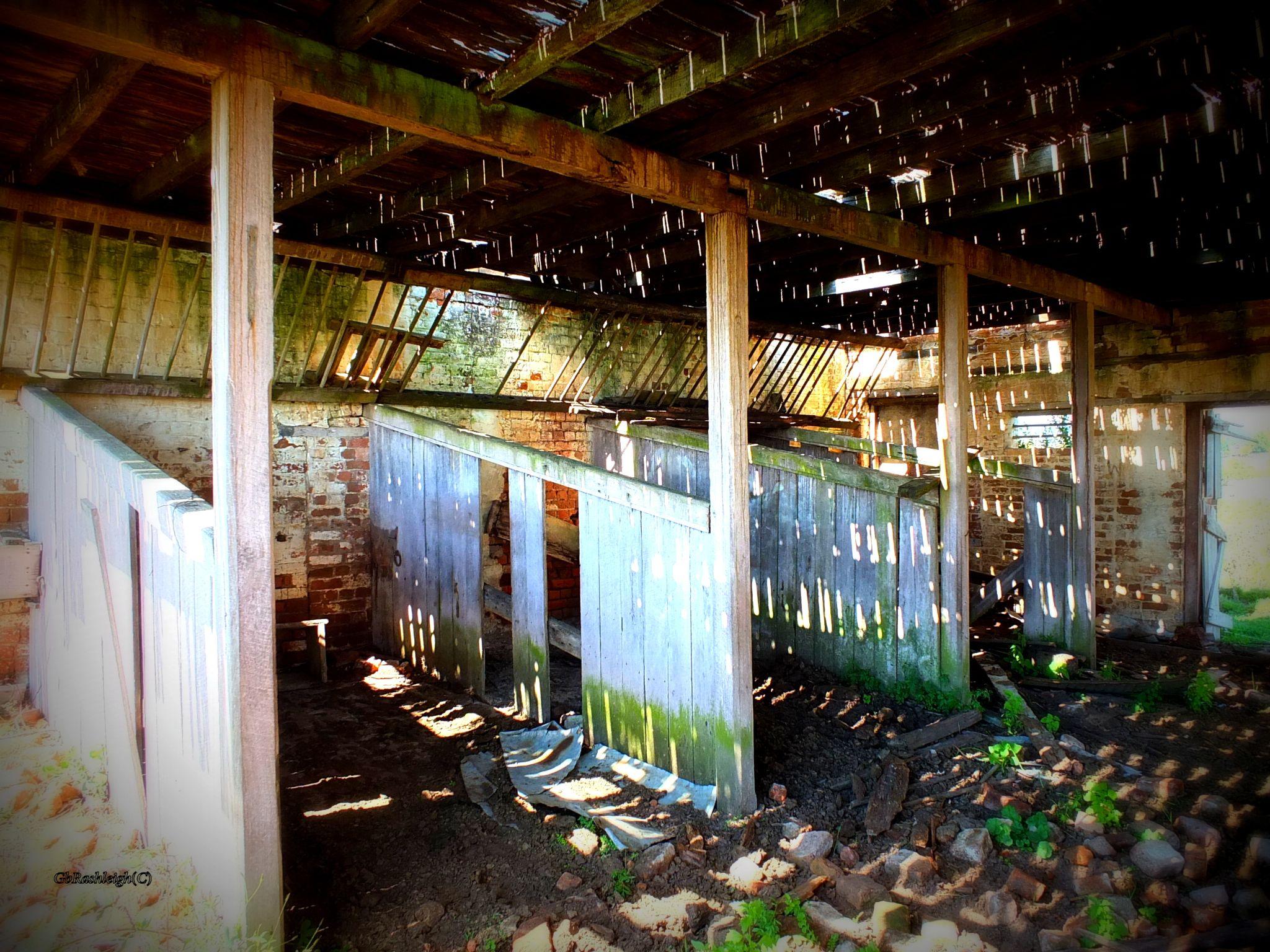 Derelict Stable Tenterfield  by gpaulsen