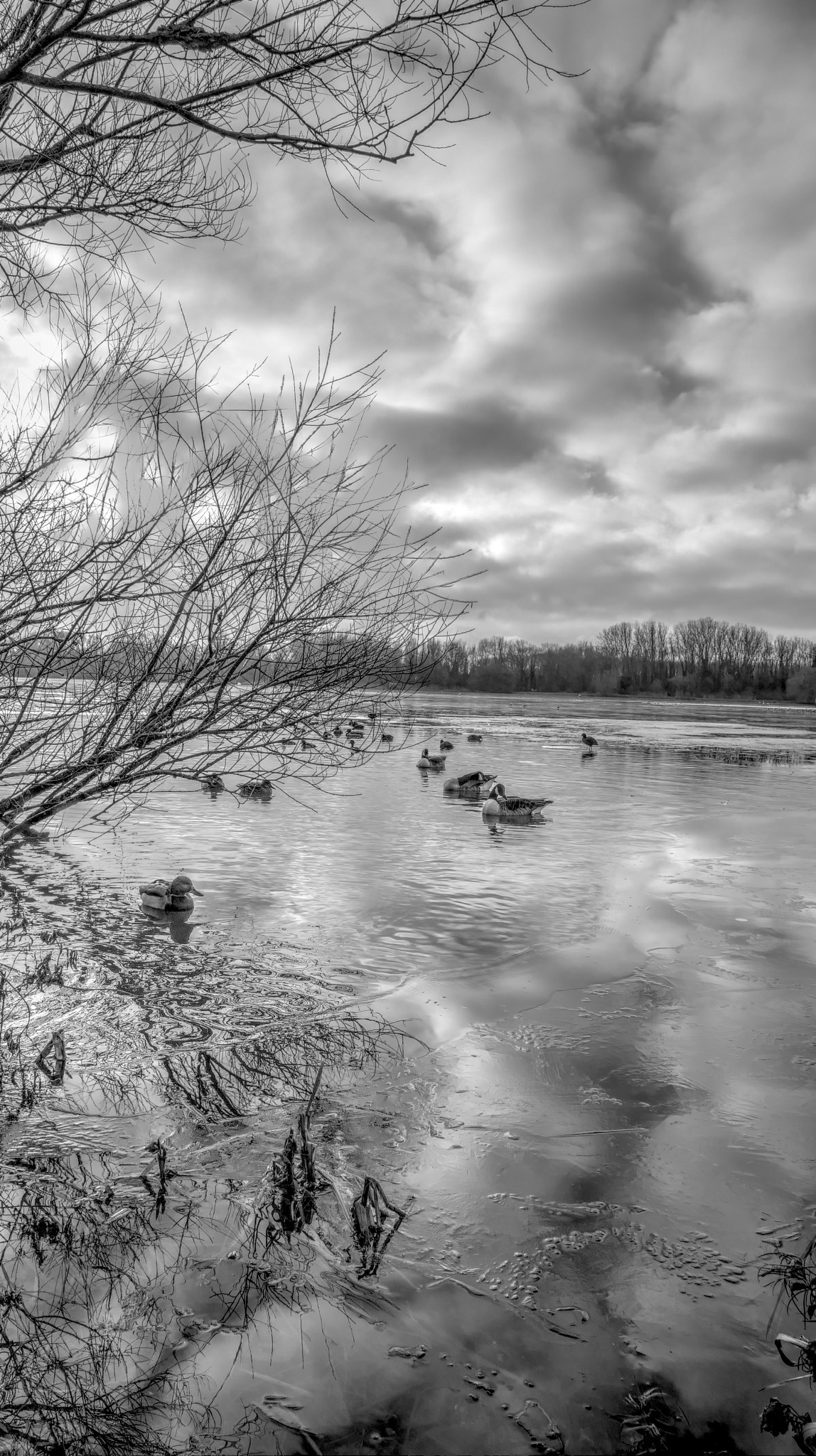 Lake & Clouds (B&W) by Steven Iodice