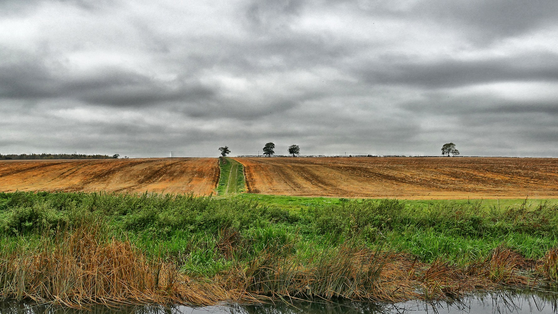 Stanwick Lakes by Steven Iodice