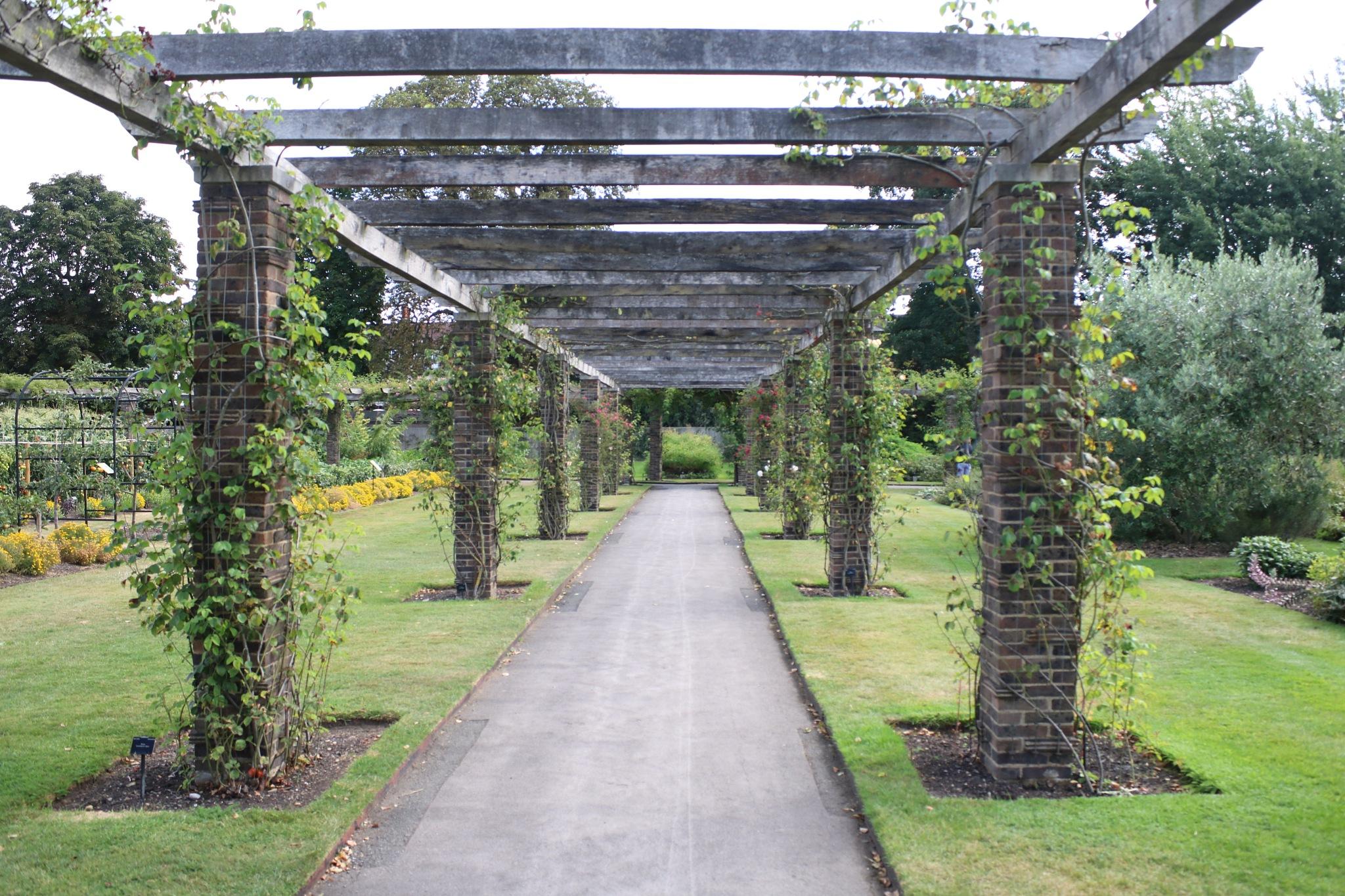 Taken at The Royal Kew Gardens, Surrey. by Mo Dessouki