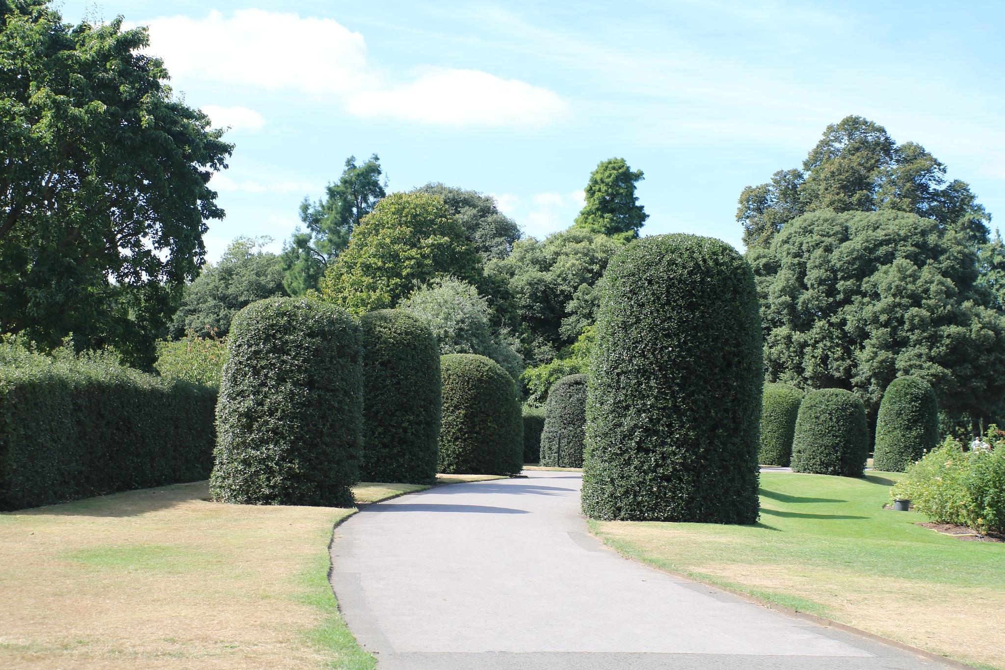 At Kew Gardens. by Mo Dessouki