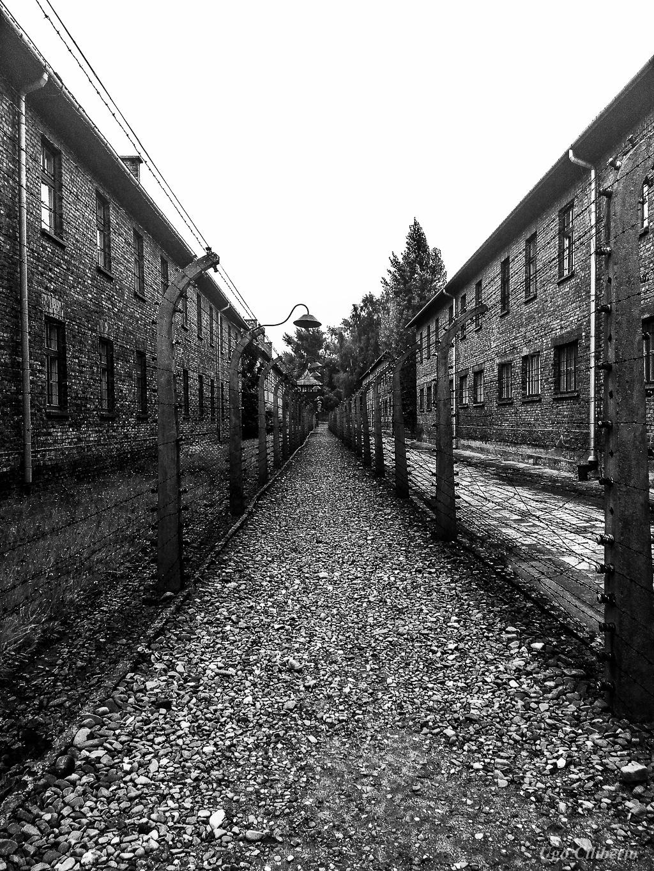 Auschwitz - Spostandosi tra i blocchi ... by ugo