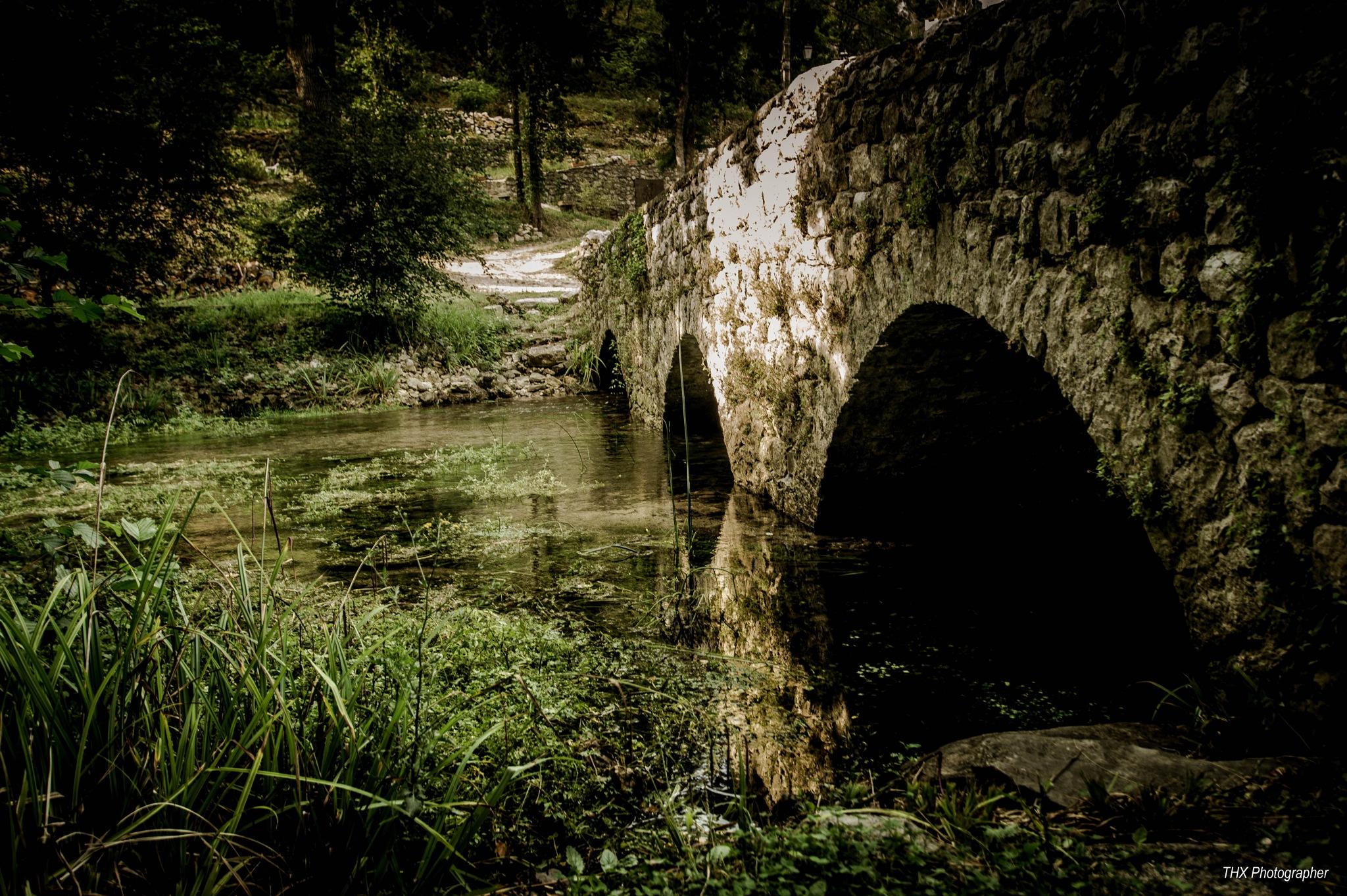 Let the river run by Yves Teyssier