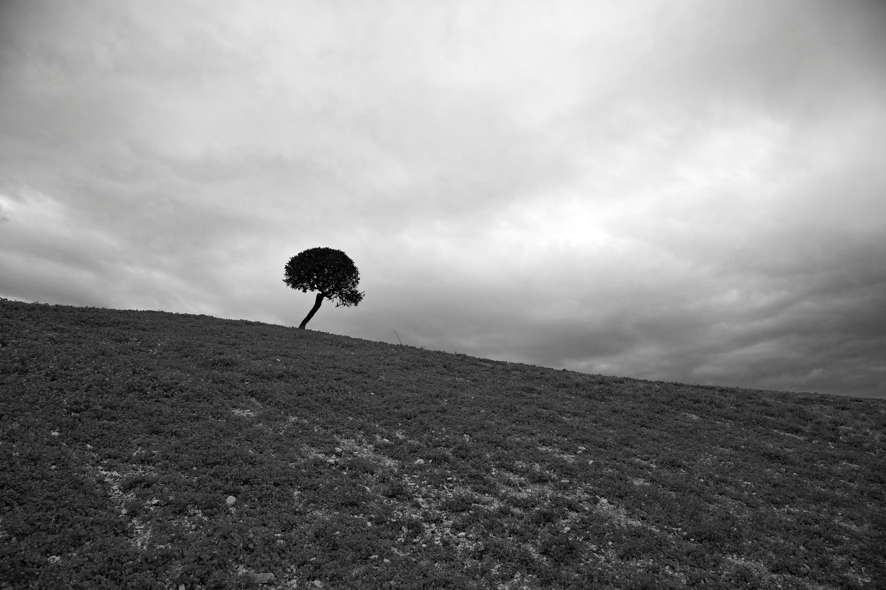 Keep Me Alive.. by Kassianos Kassianou
