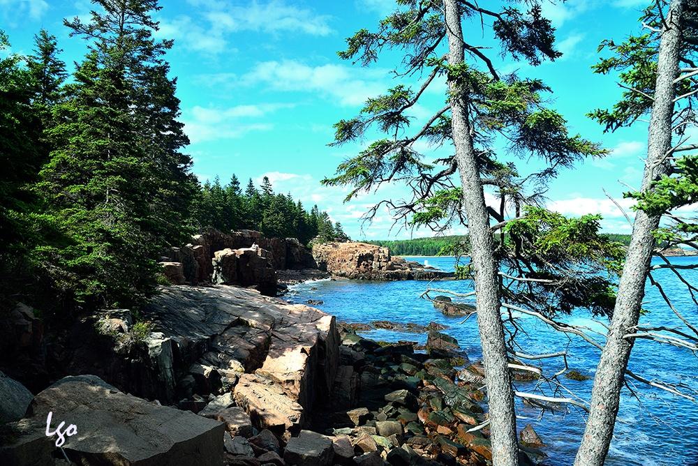 Acadia National Park, ME by Leyana