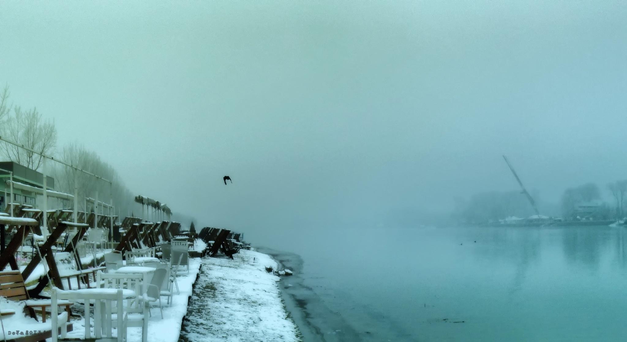 Ada Winter by deya