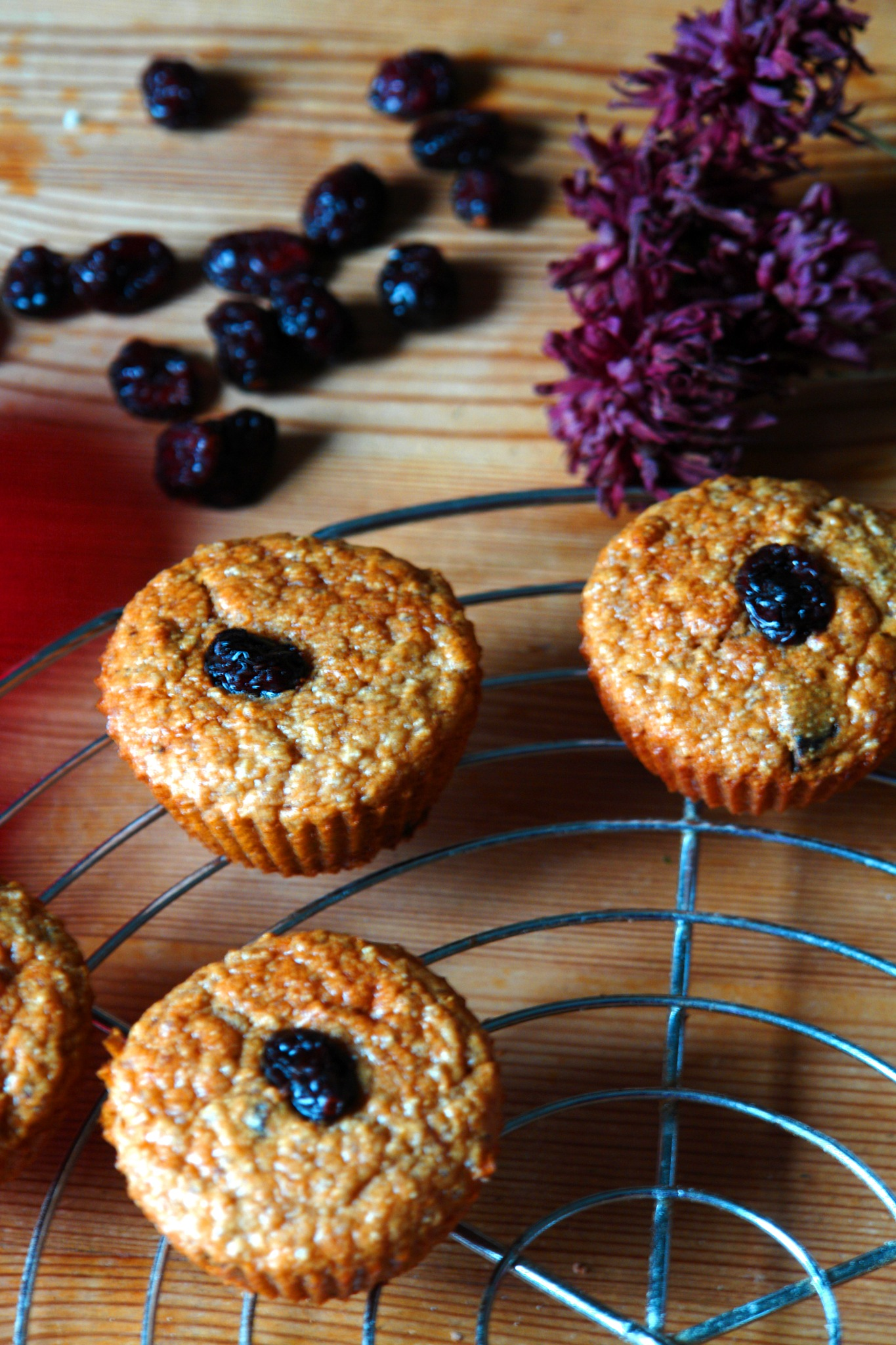 Muffins mit Hirse und Cranberrys by gordana1000
