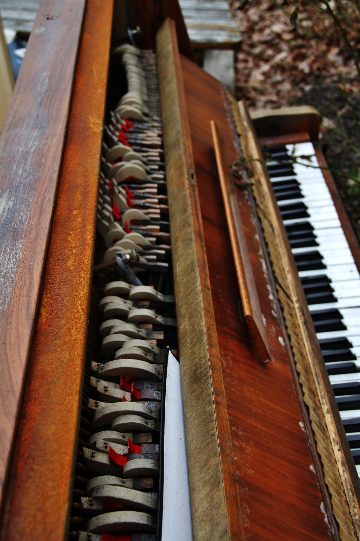 Piano of the poor... by Hans Andreas Alexander Müller
