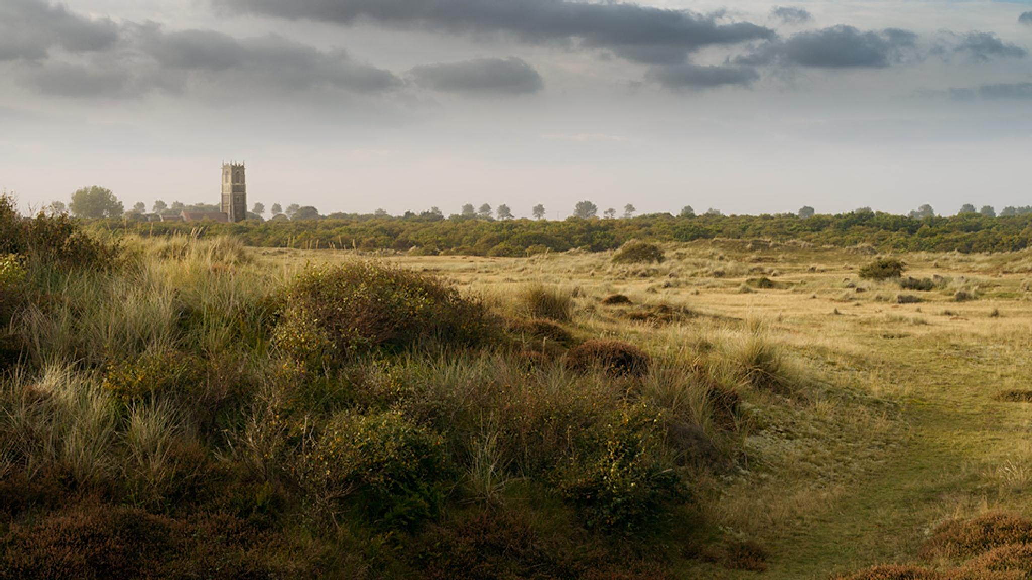 Winterton Heath by stevedocwra