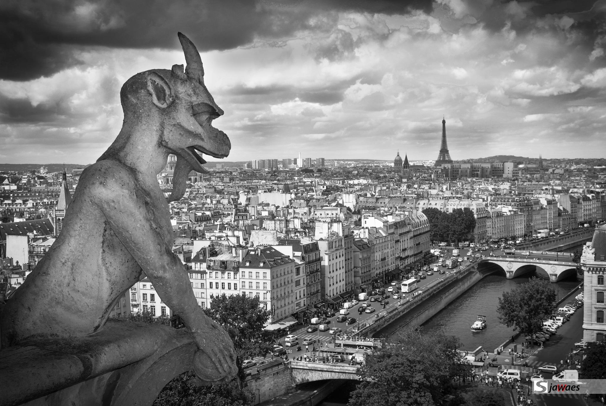 PARIS WATCHING by Javier Sanz Perez