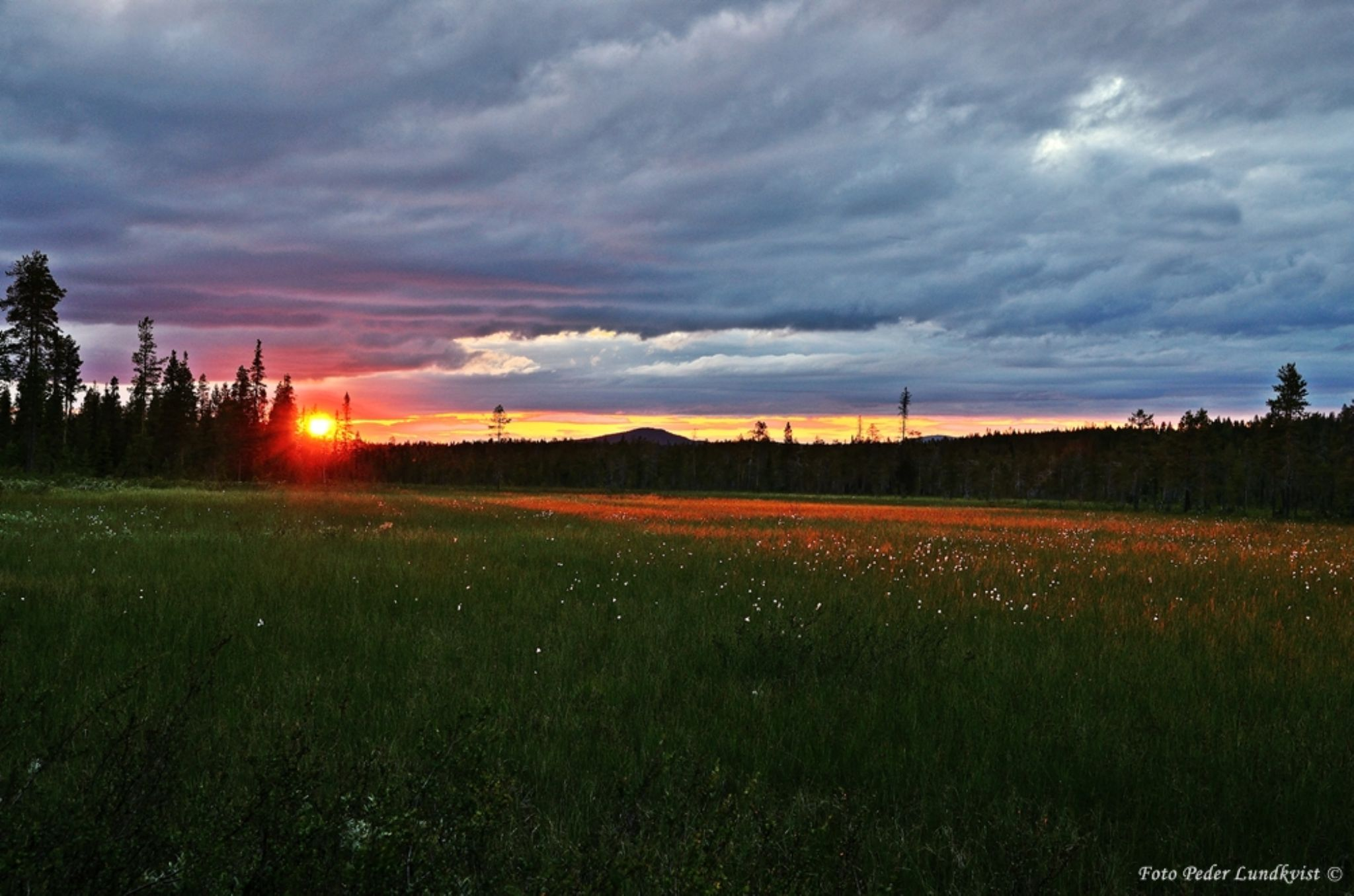 Summernight in the land of the taiga by aplog1