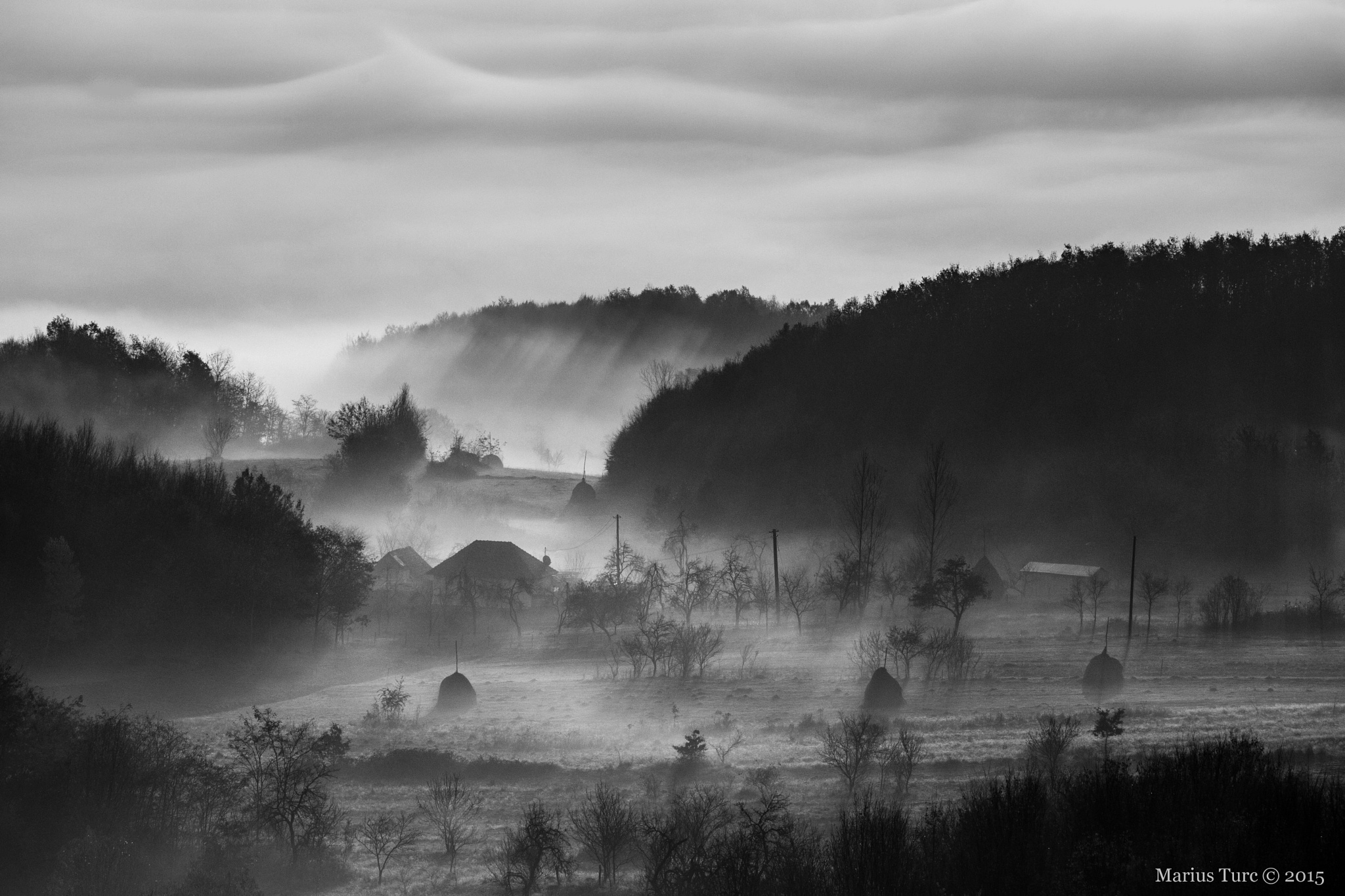 Morning in B&W by TurcMarius
