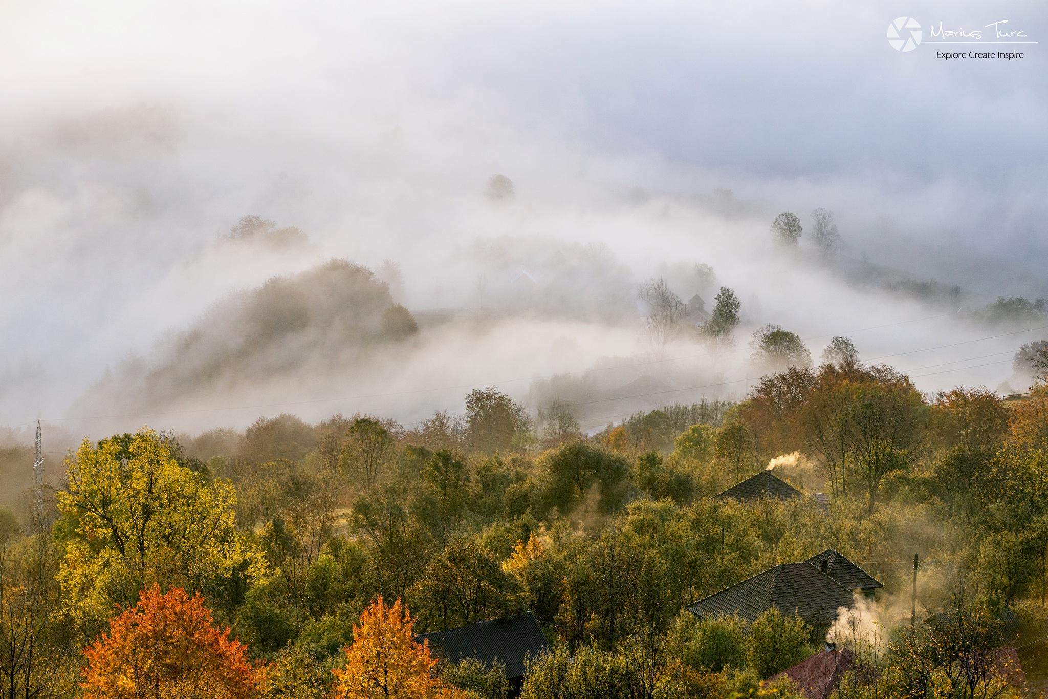 Foggy morning by TurcMarius