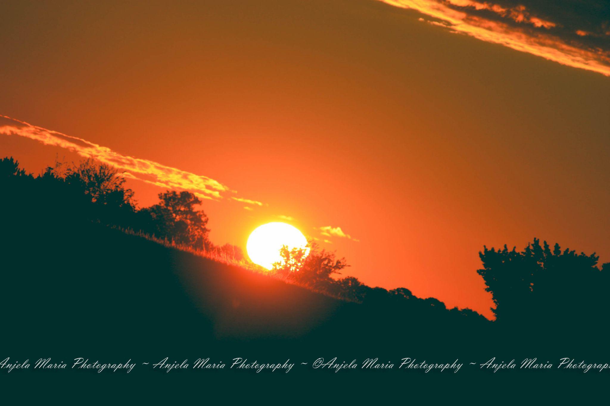 Sunset by Anjela Litle
