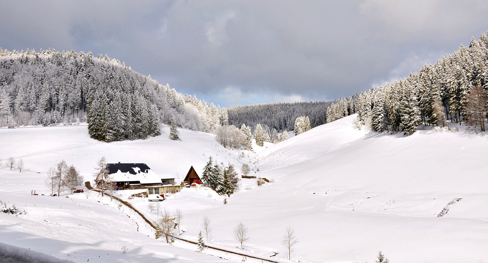 winter in the black forest (1) by marenka
