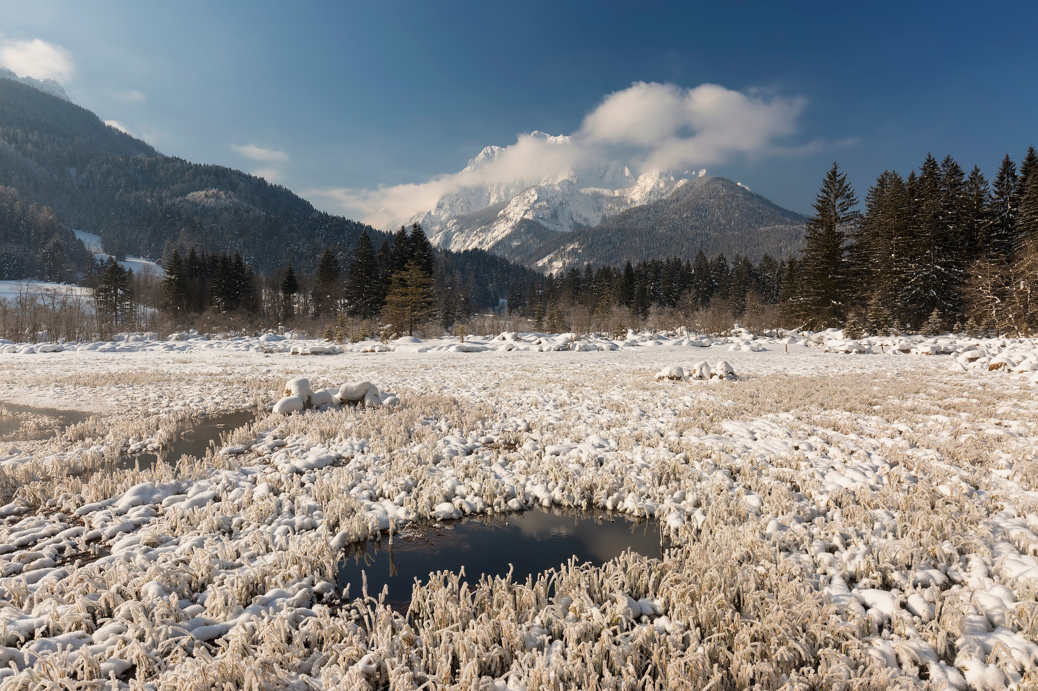 Byebye winter by Bor Rojnik