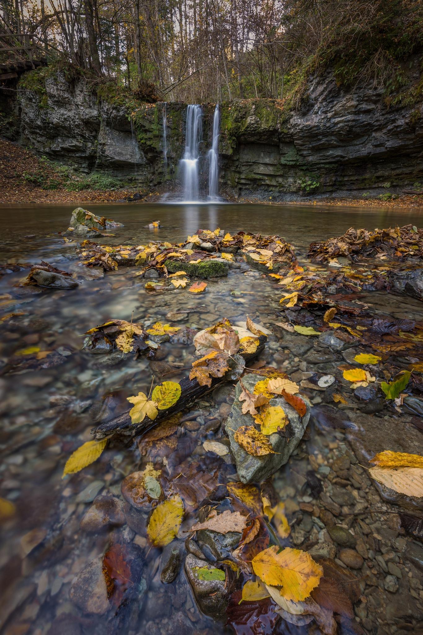 Autumn creek with waterfall by Bor Rojnik