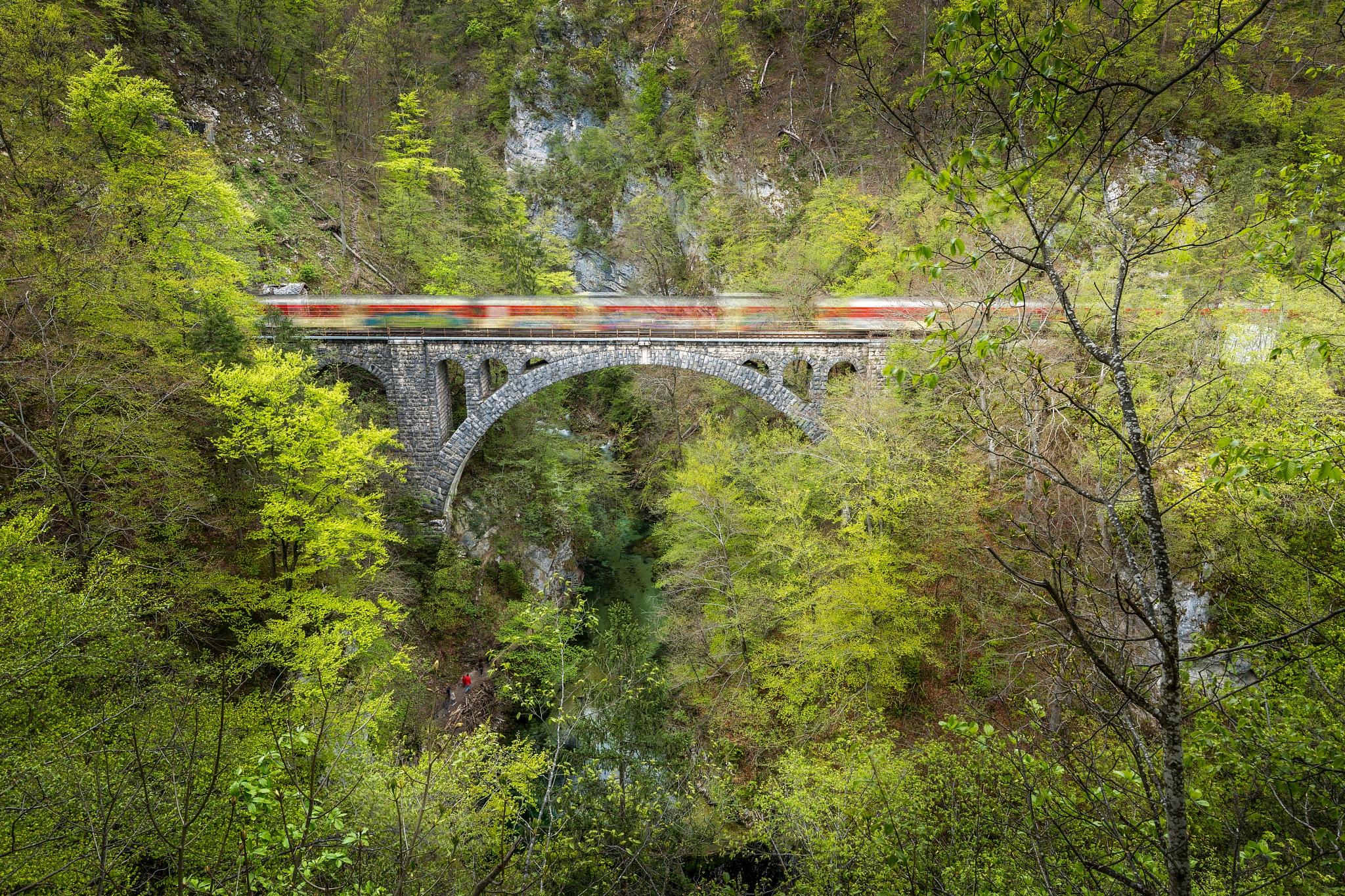 Fast train over Vintgar gorge by Bor Rojnik