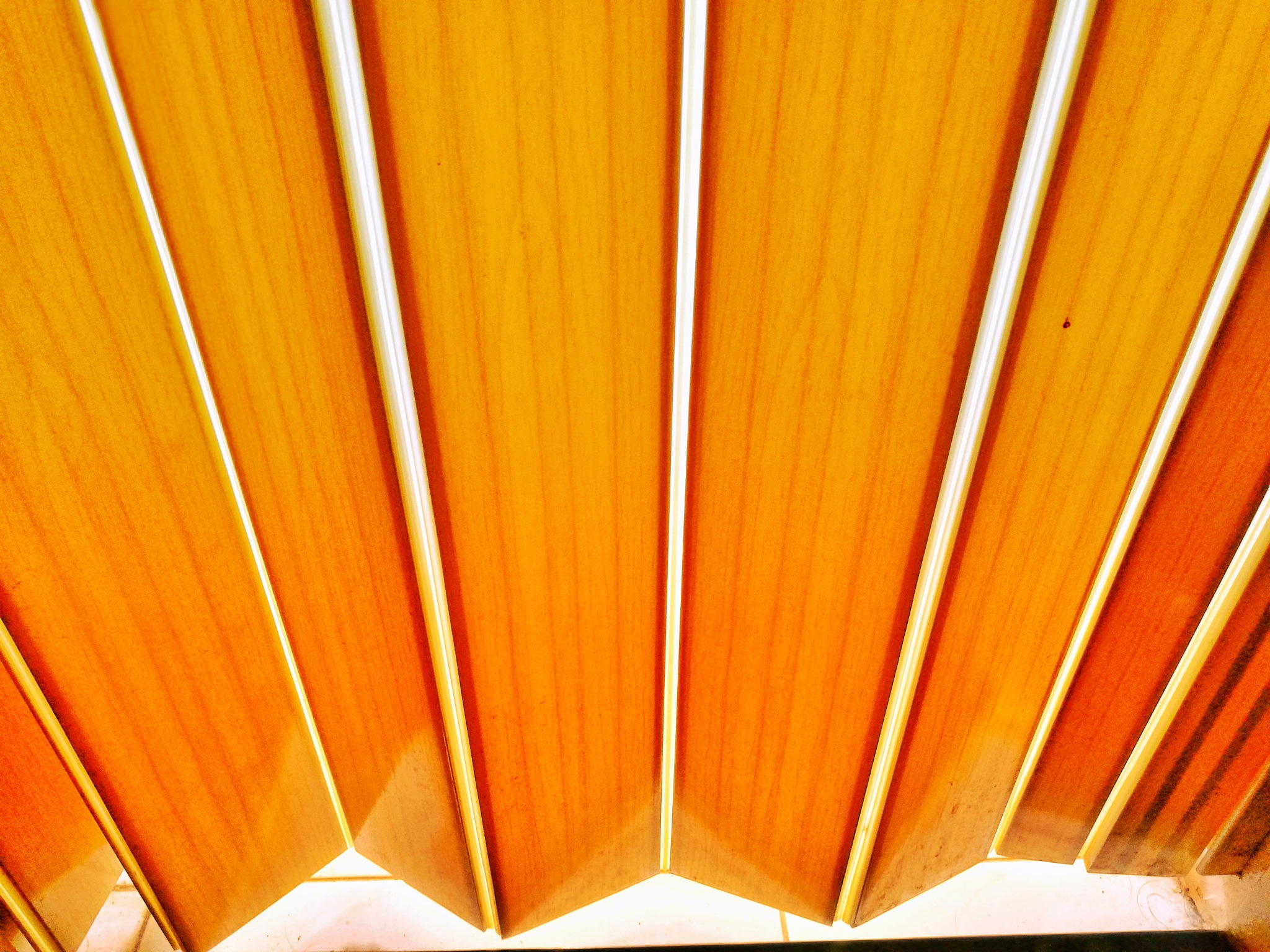 Folding door by leocary