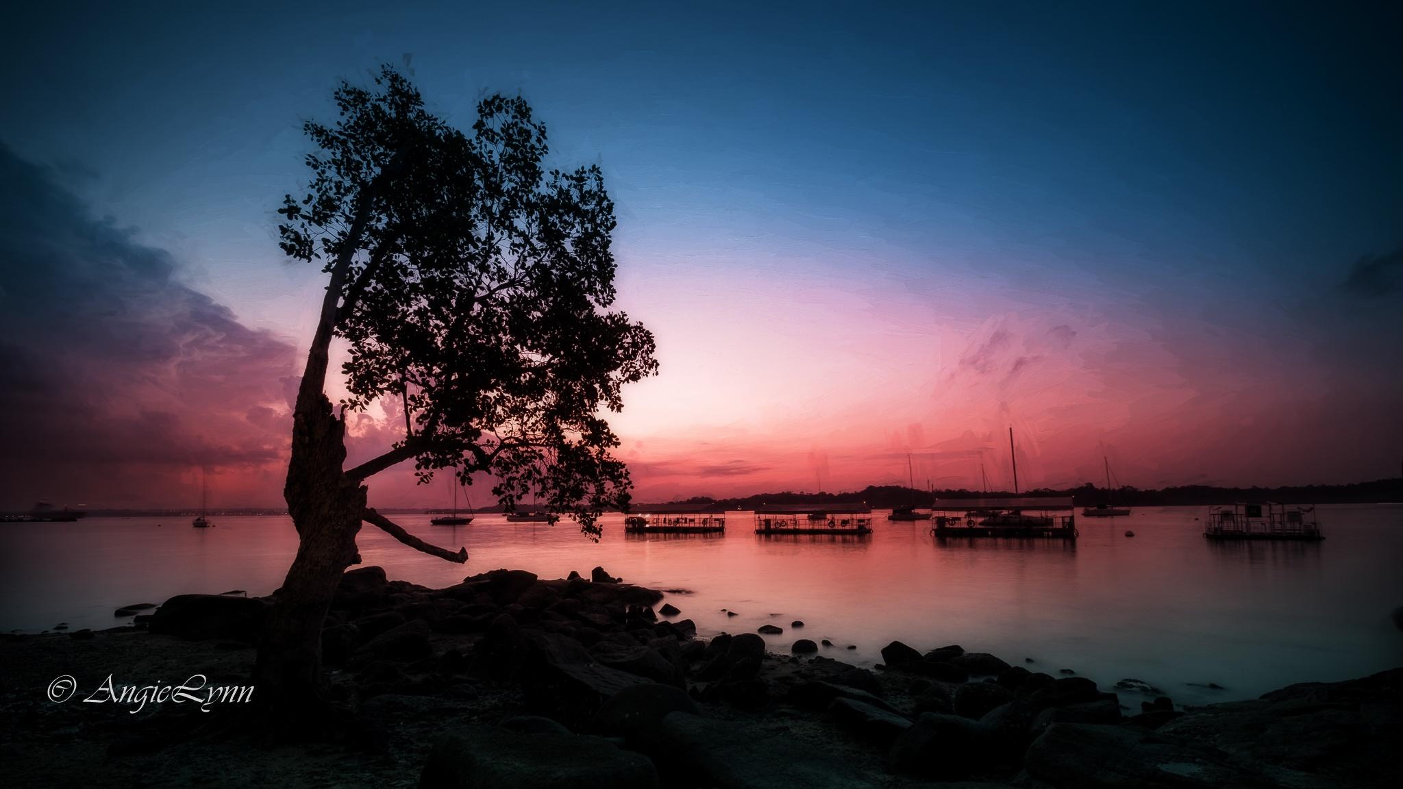 Alone at dusk by AngieLynn