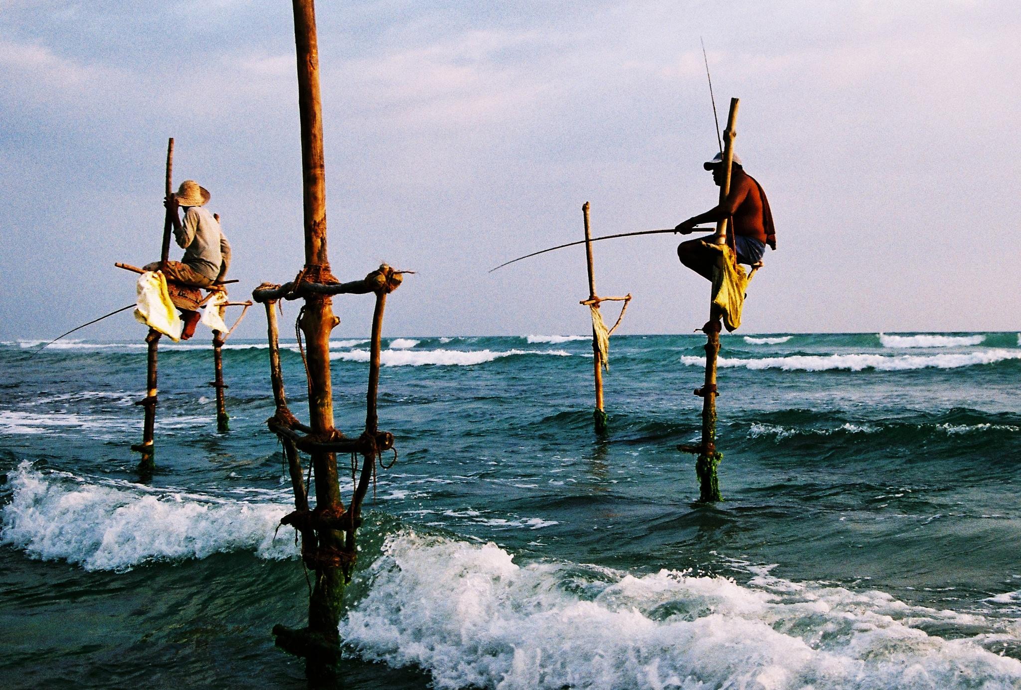 Stilt Fishermen by Roots Garden Supertramp