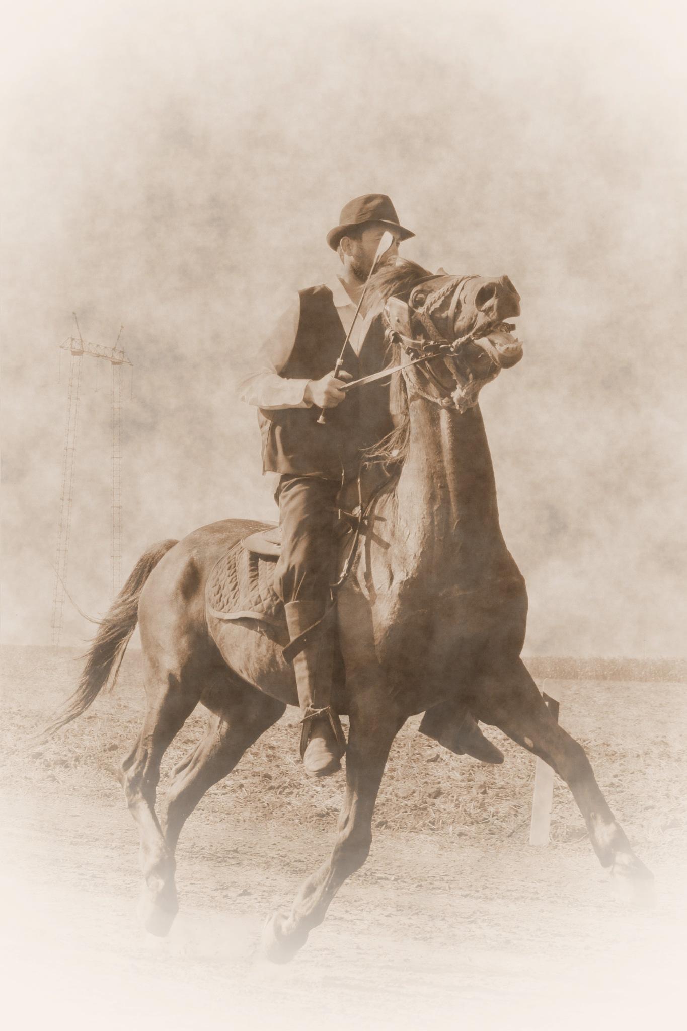 Horseman by Dragan Lendjel Lenjo