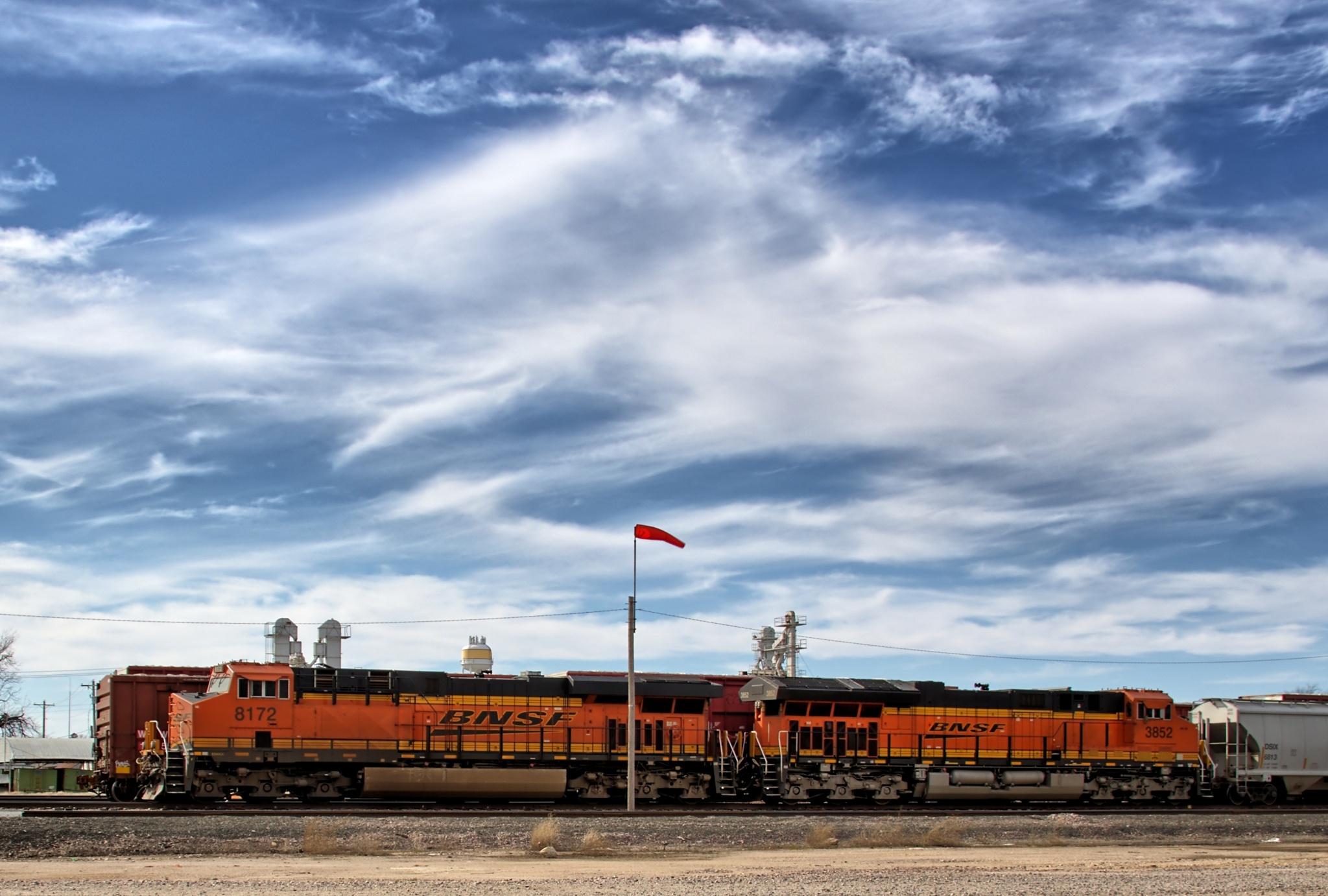 BNSF Train by David M.