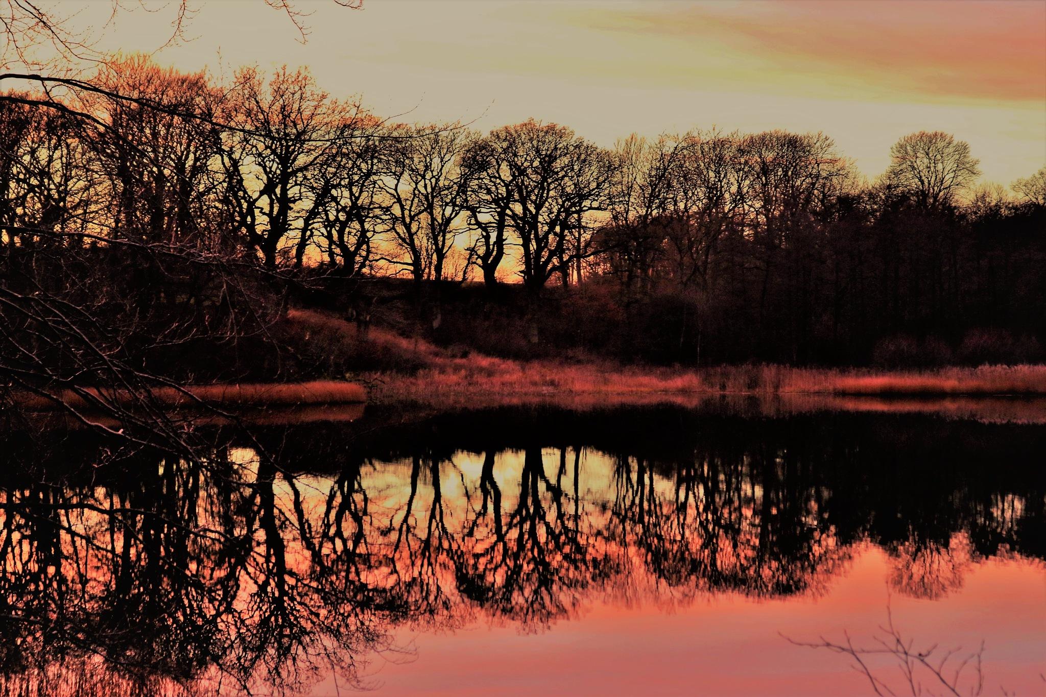 The Lake of Krageholm. by KerstinP.