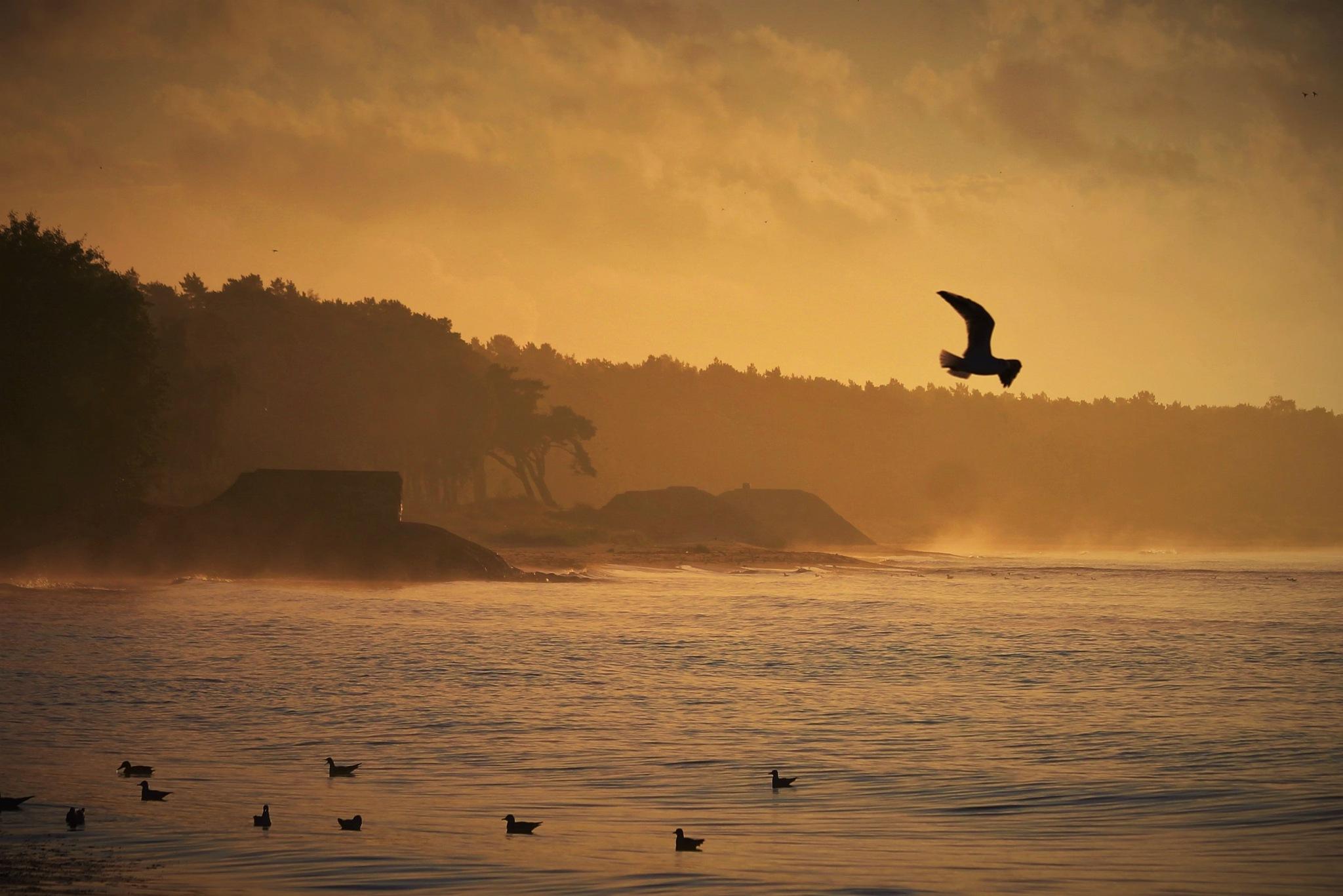 Septembermorning at Beach. by KerstinP.