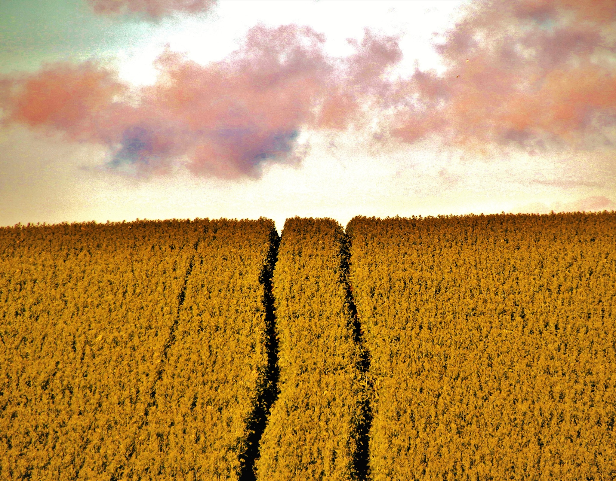 Way to Heaven. by KerstinP.