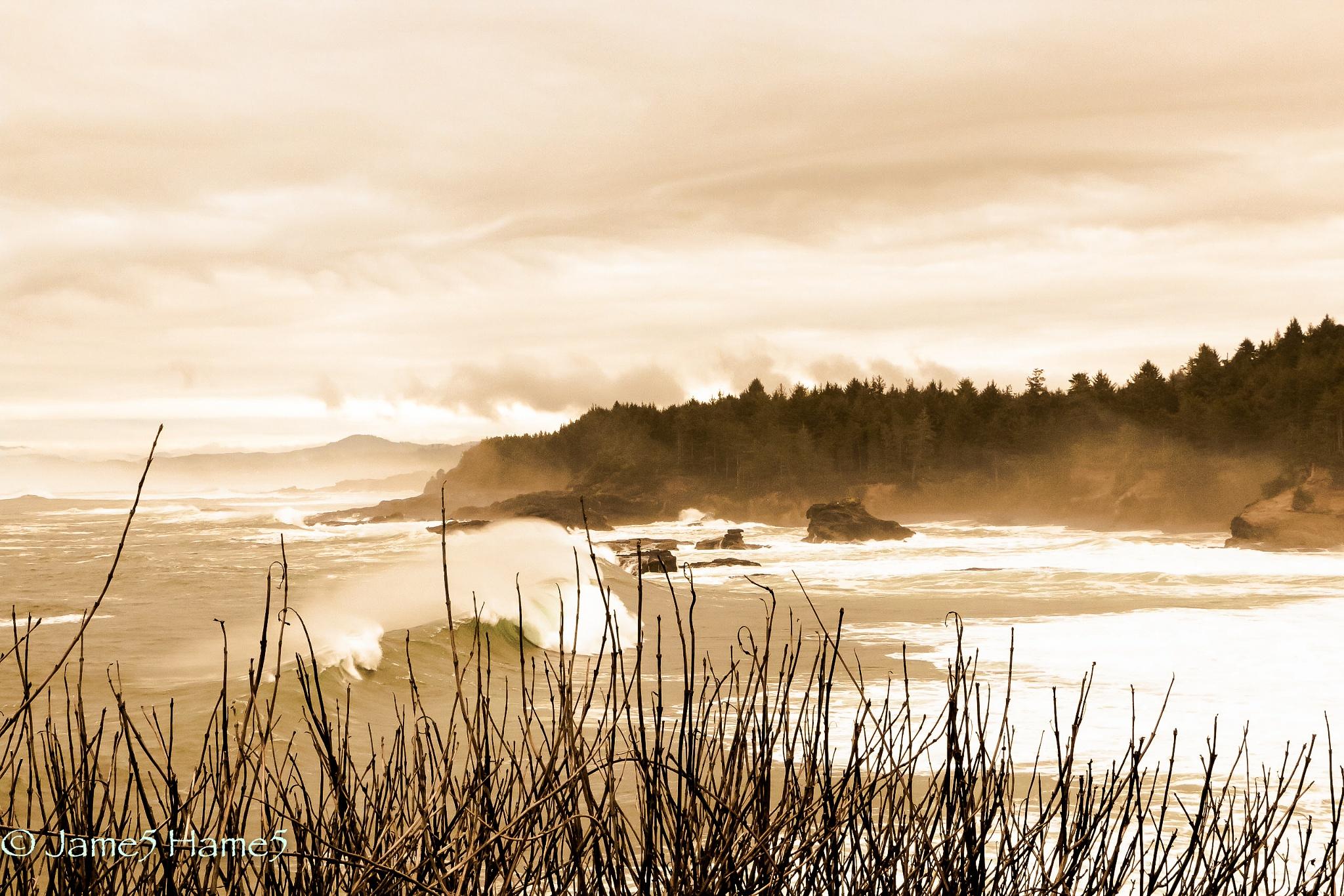 Forgotten Tides by Jimmy James Hames